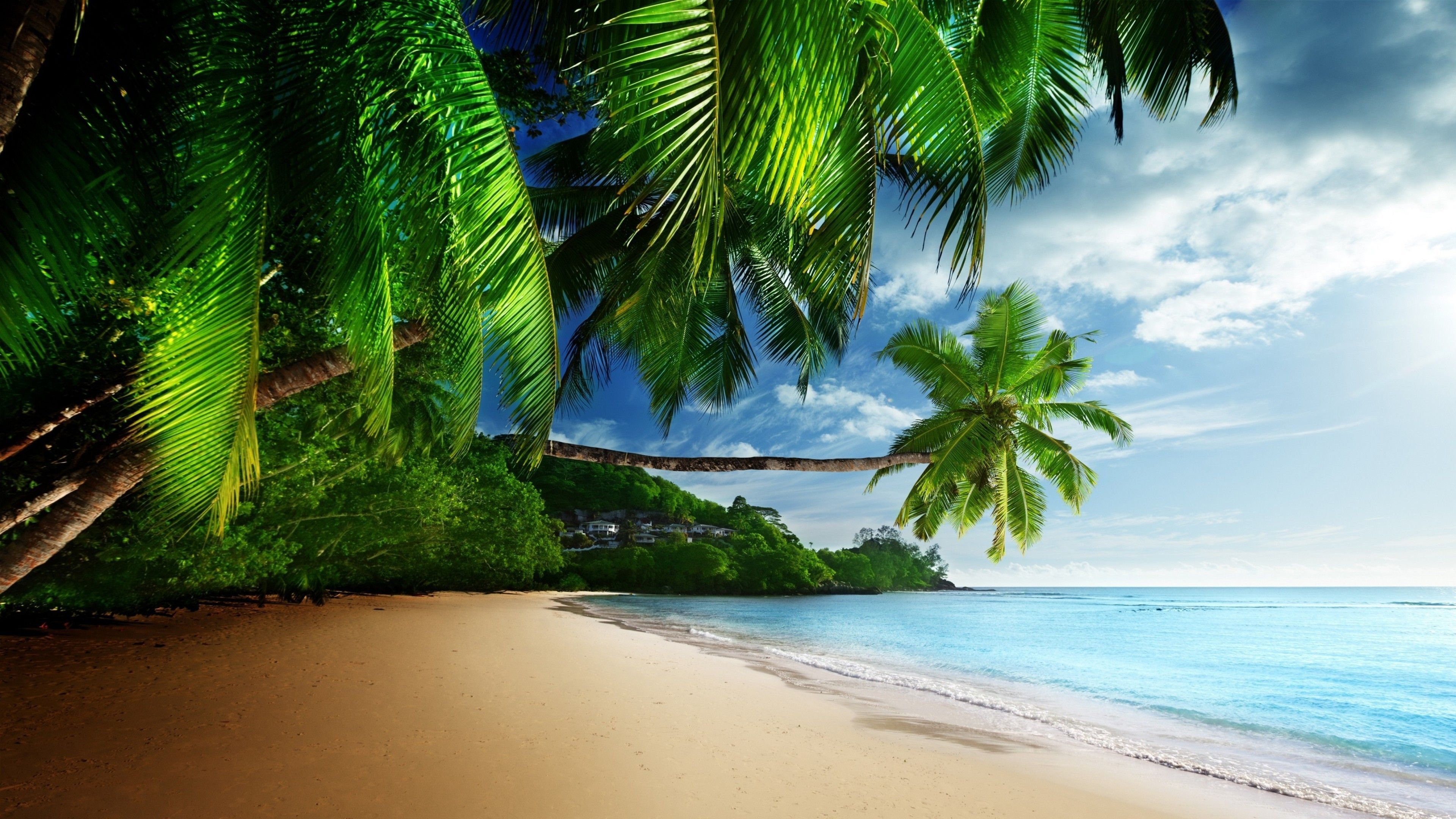 64K Ultra HD Beach Wallpapers - Top Free 64K Ultra HD Beach