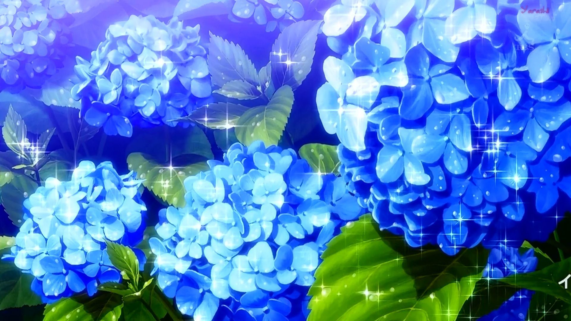 Anime Flower Wallpapers Top Free Anime Flower Backgrounds Wallpaperaccess