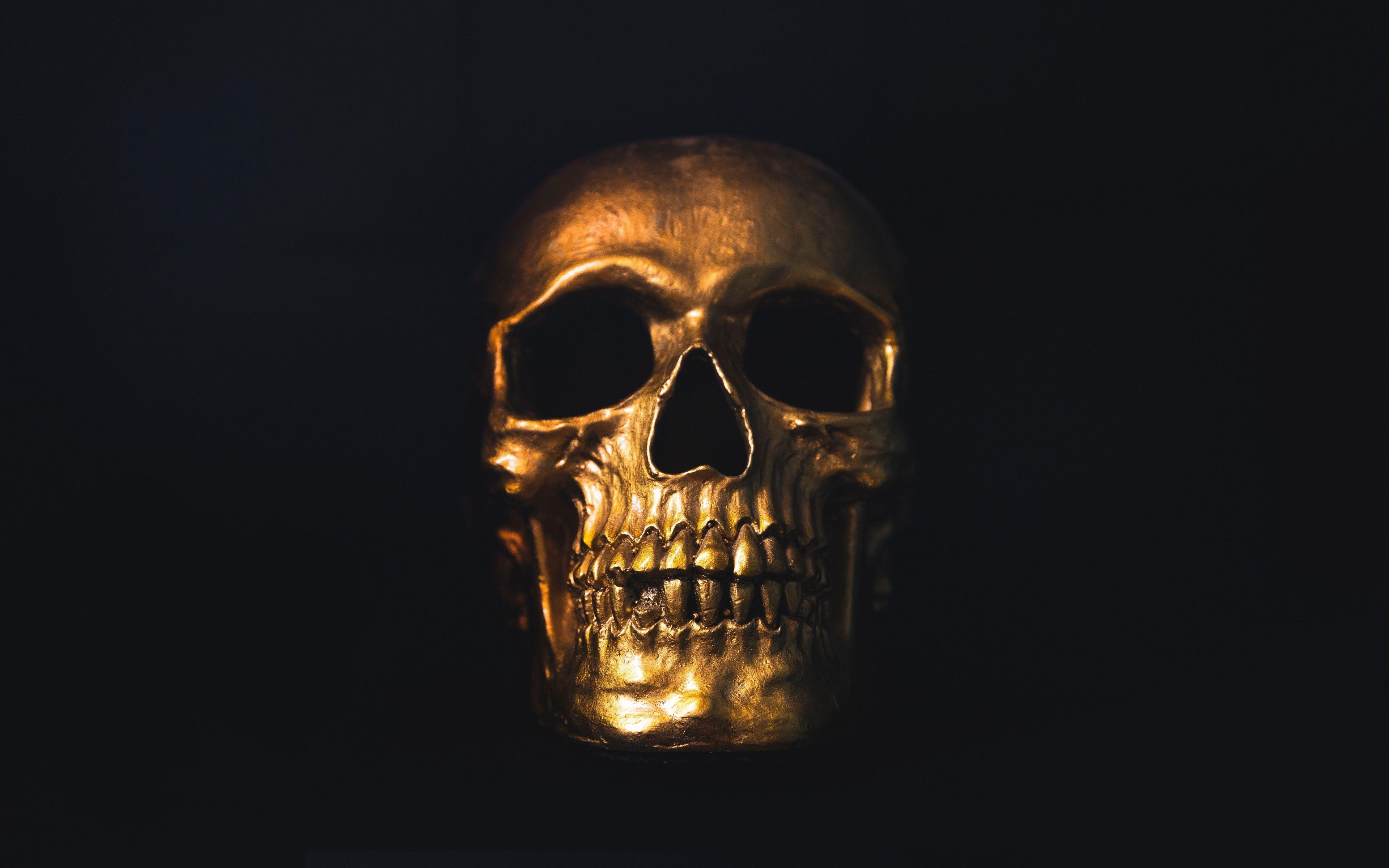 4k Ultra Hd Skull Wallpapers Top Free 4k Ultra Hd Skull Backgrounds Wallpaperaccess