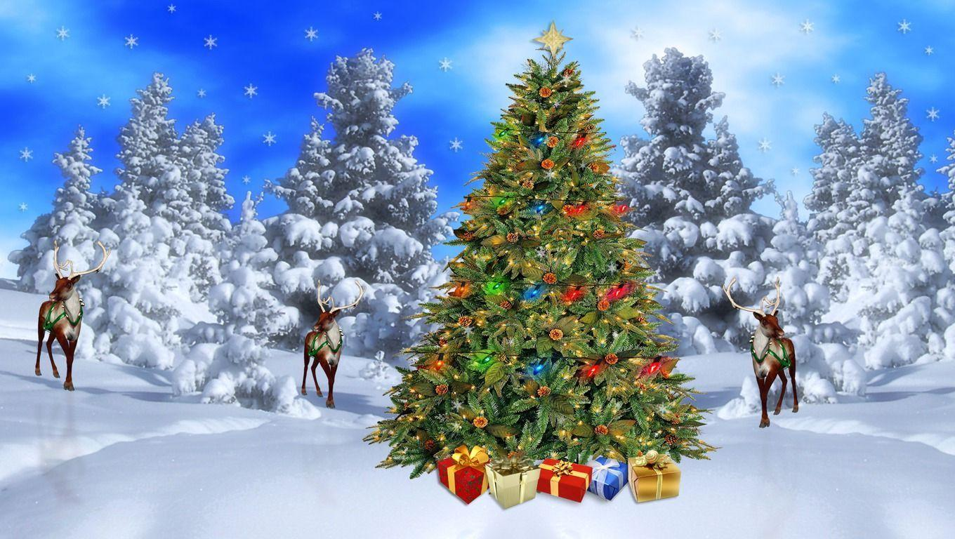 Christmas Landscape Wallpapers Top Free Christmas Landscape Backgrounds Wallpaperaccess