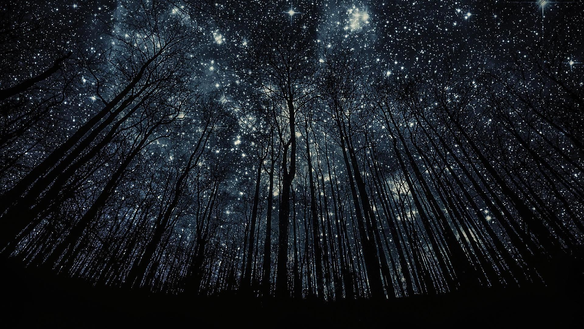 Hd Stars Wallpapers Top Free Hd Stars Backgrounds Wallpaperaccess
