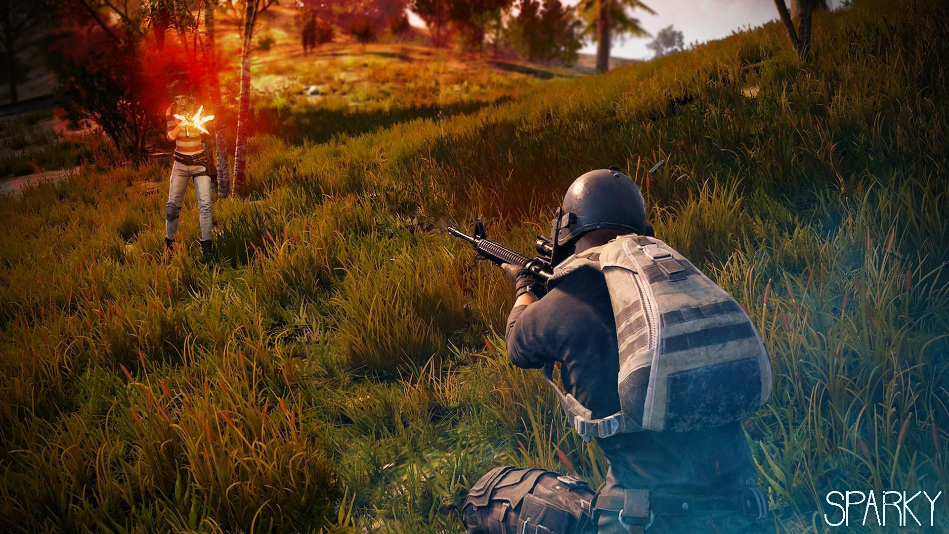 X Wallpaper Engine D K Playerunknowns Battlegrounds Namn