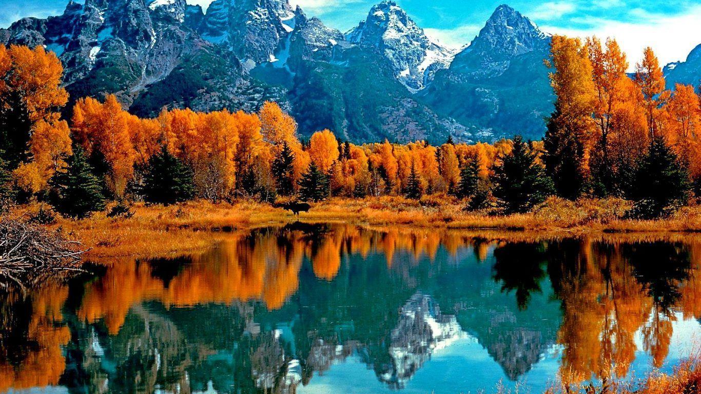Mountain Fall Foliage Wallpapers Top Free Mountain Fall Foliage Backgrounds Wallpaperaccess