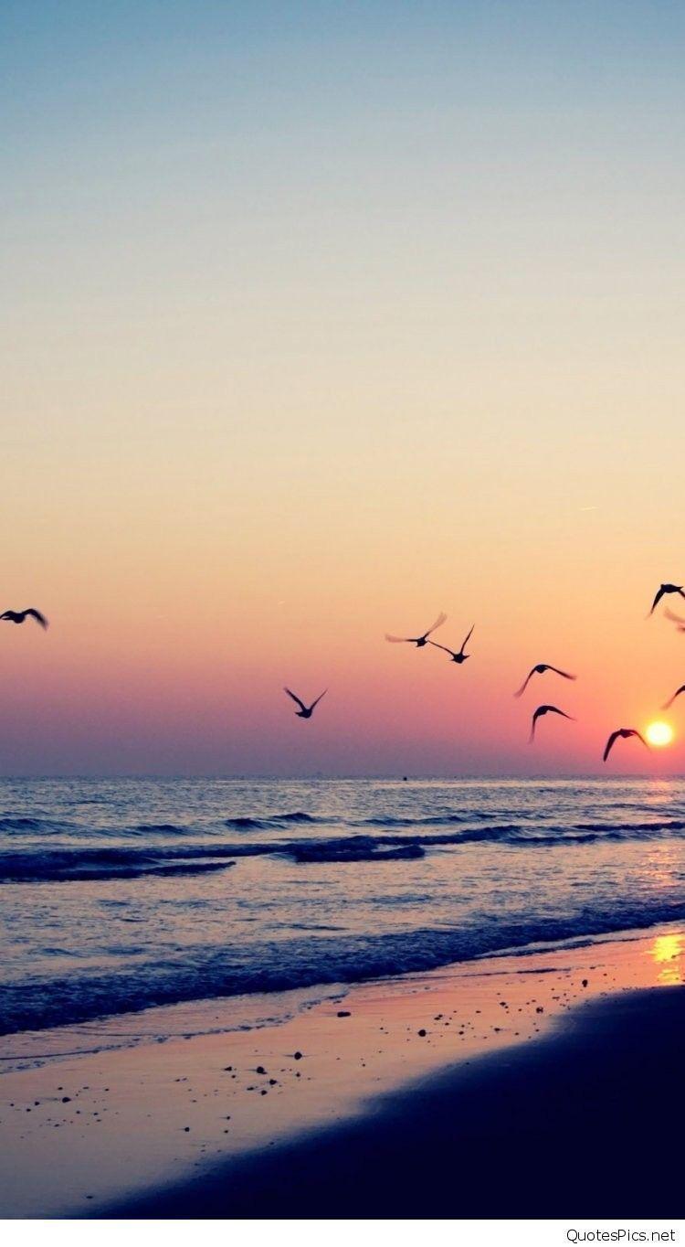 60 Best Free Beach Iphone Wallpapers Wallpaperaccess