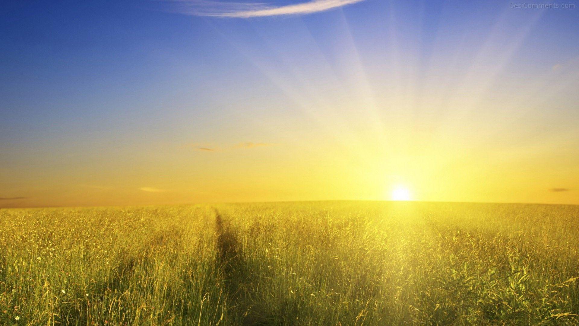 Hình ảnh Mặt trời mọc 1920x1080 Hình ảnh Mặt trời mọc với độ phân giải cao nhất về thiên nhiên cho Pc.  Full HD