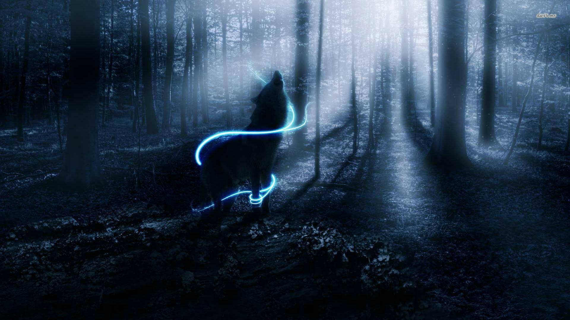 Lone Wolf Wallpapers Top Free Lone Wolf Backgrounds