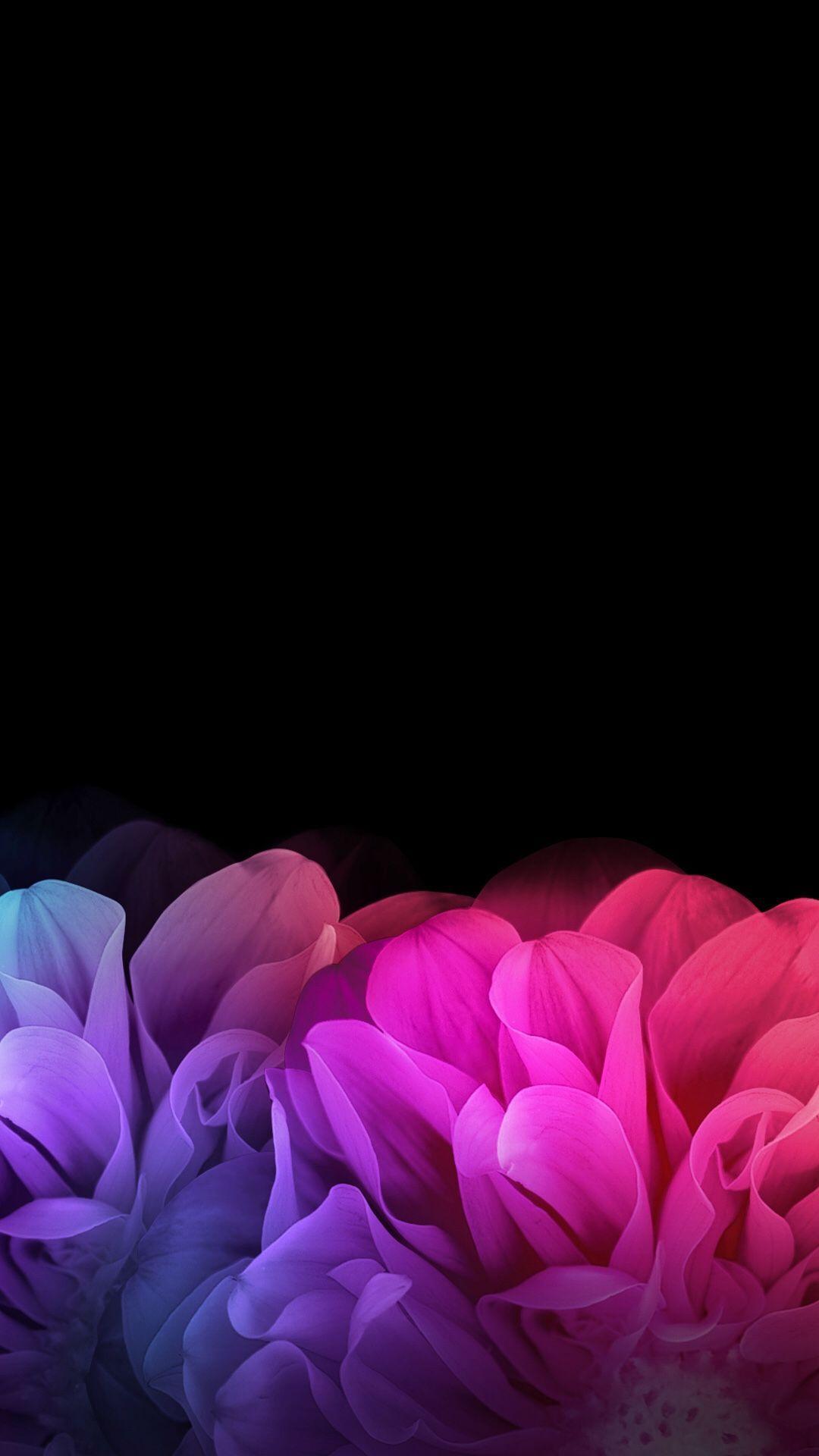 Black Flower Wallpapers Top Free Black Flower Backgrounds Wallpaperaccess