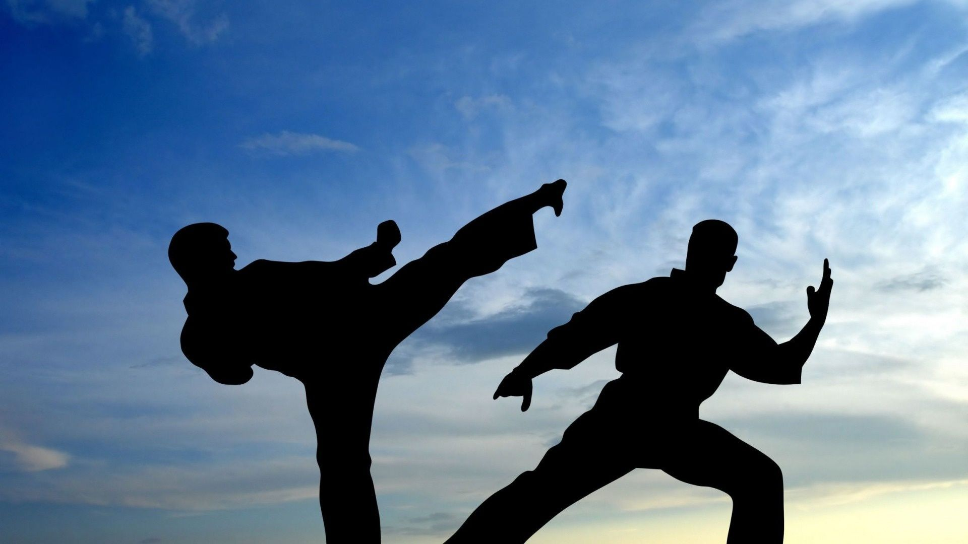 Martial Arts Wallpapers Top Free Martial Arts Backgrounds