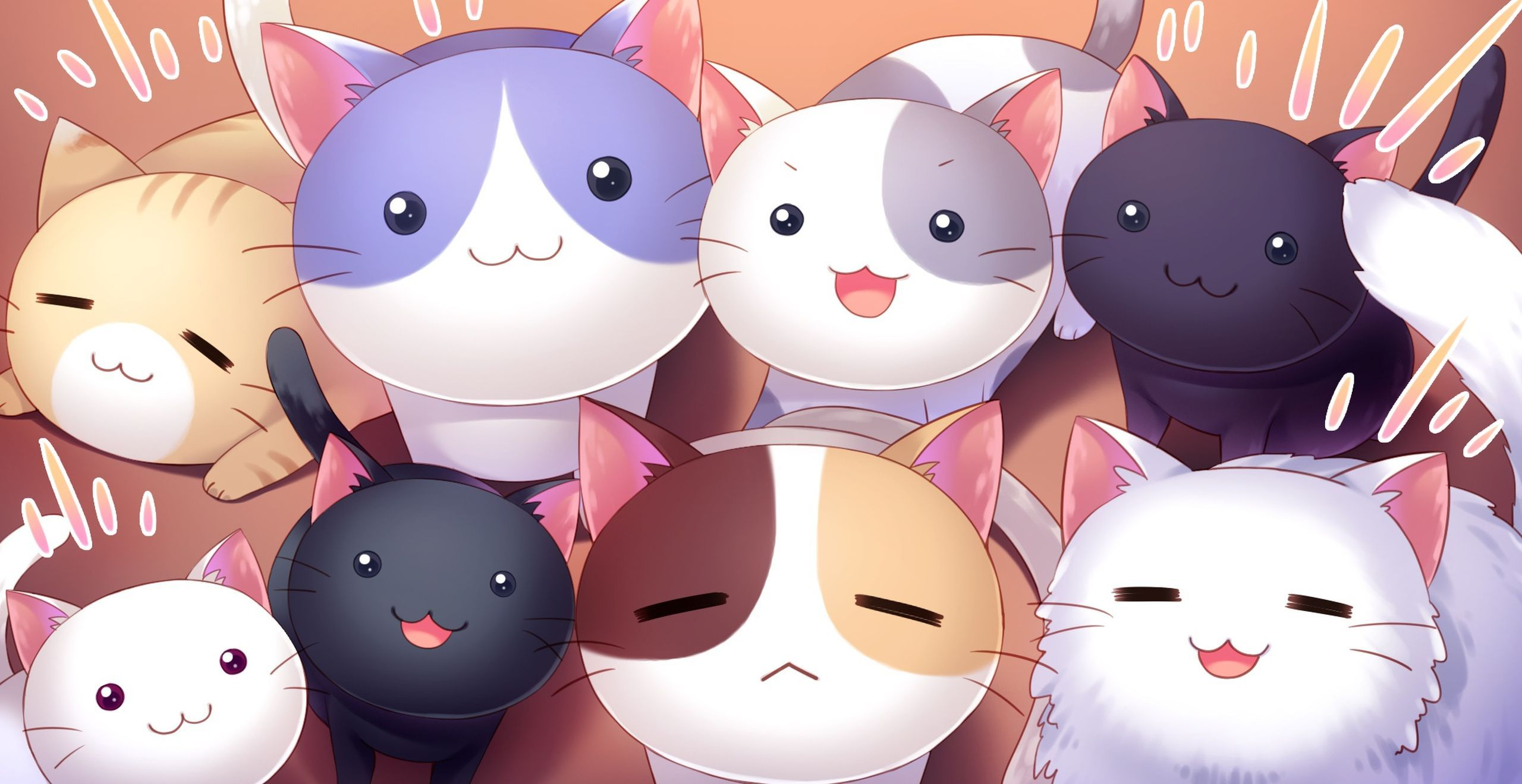 46 Best Free Anime Cat Wallpapers