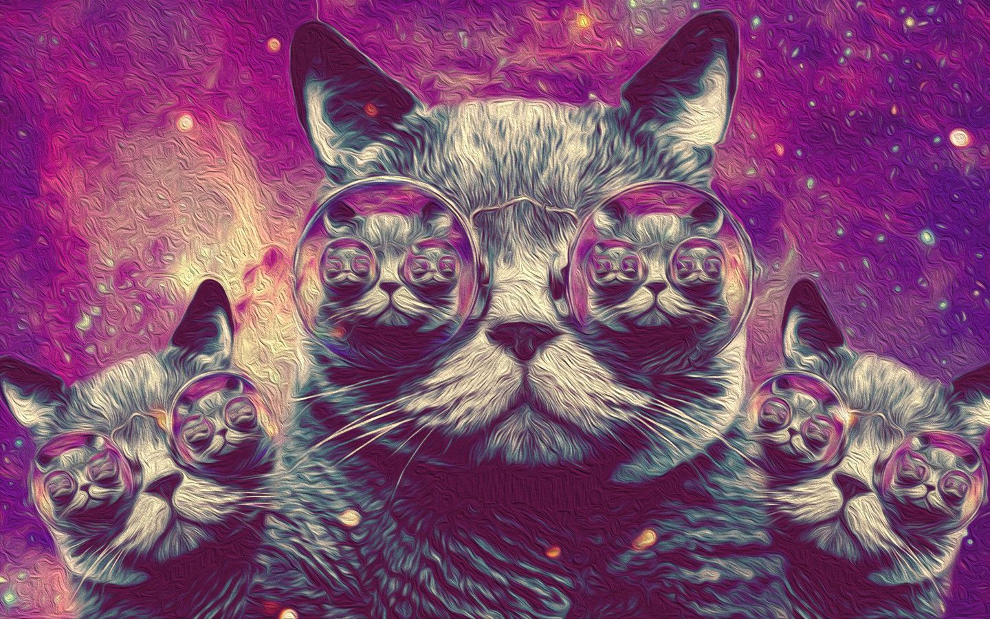 60 best free hipster cat wallpapers wallpaperaccess