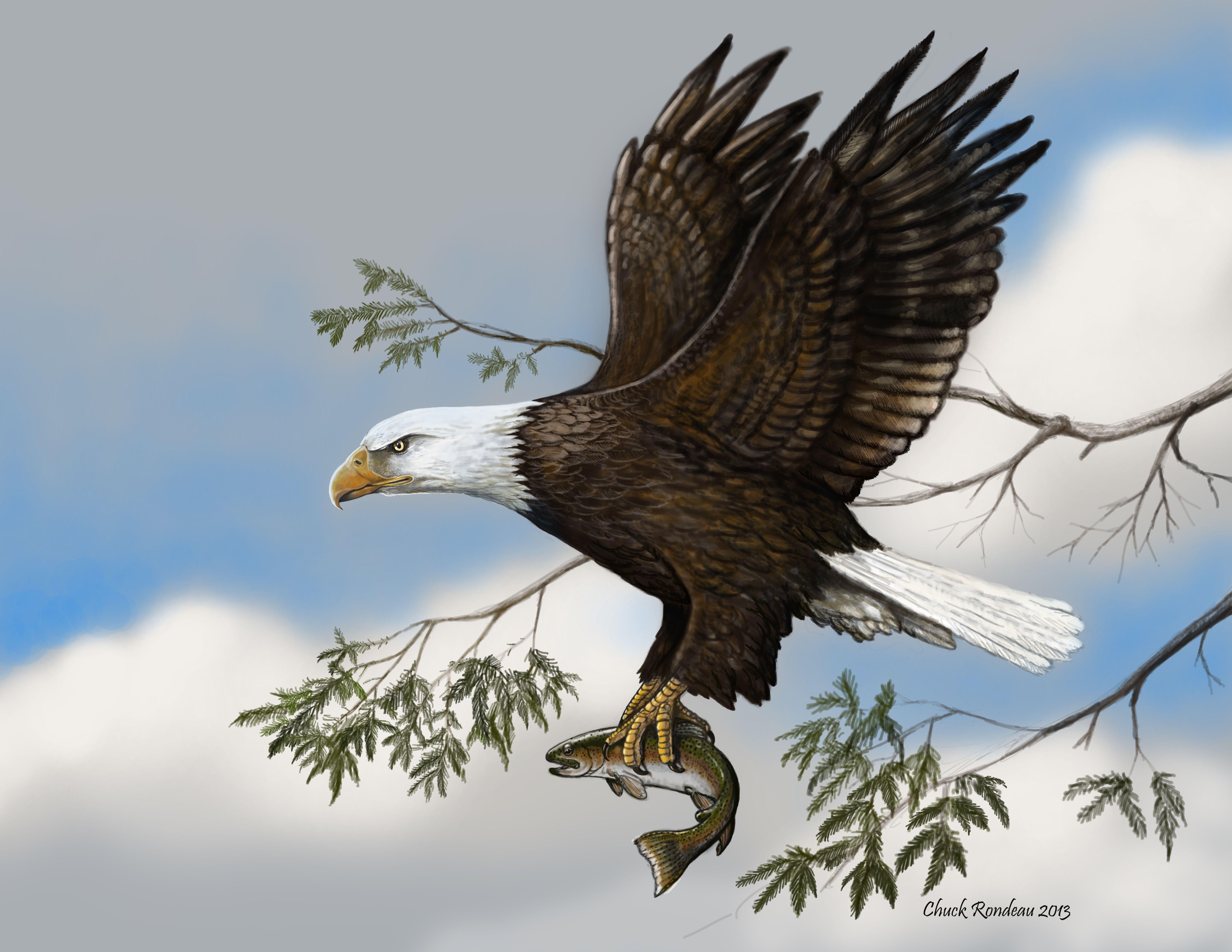 Картинки орла на дереве