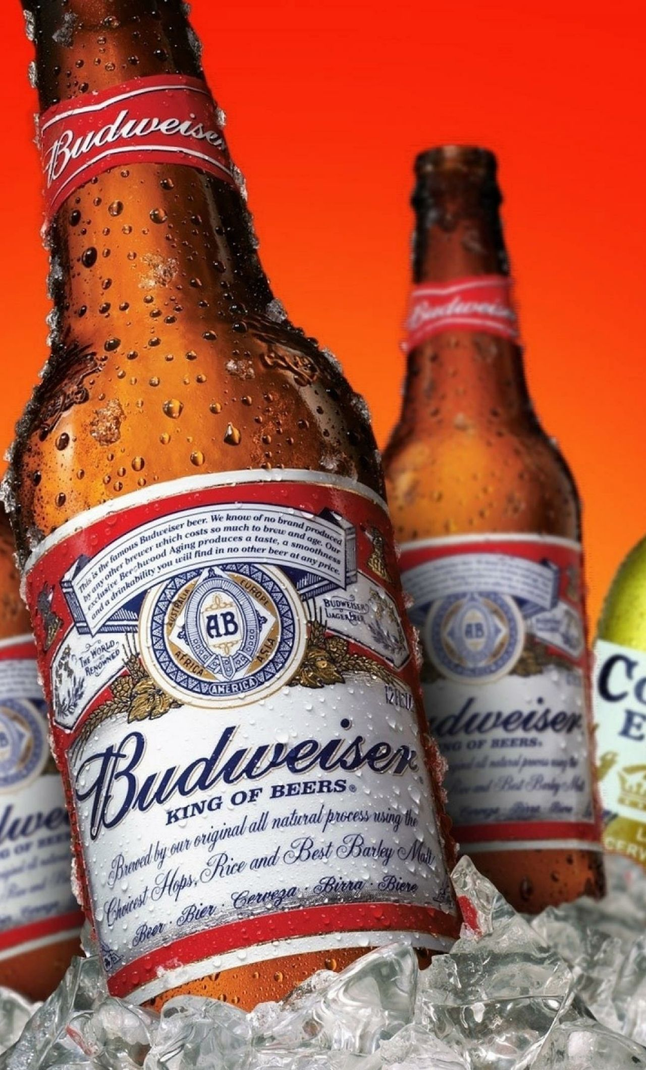 bud Background  |Budweiser Select Wallpaper