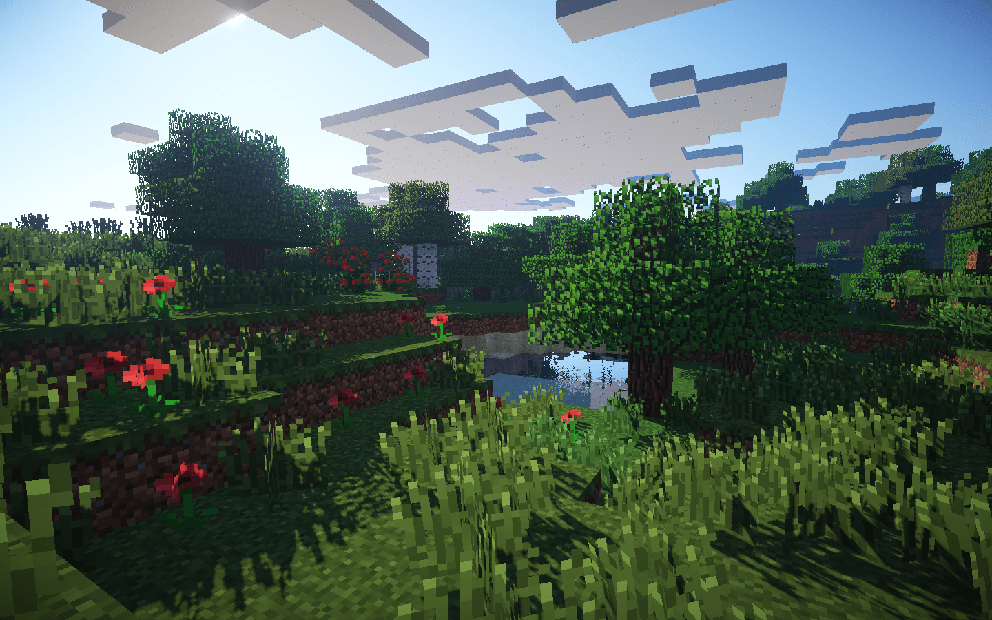 Picture Perfect | Minecraft
