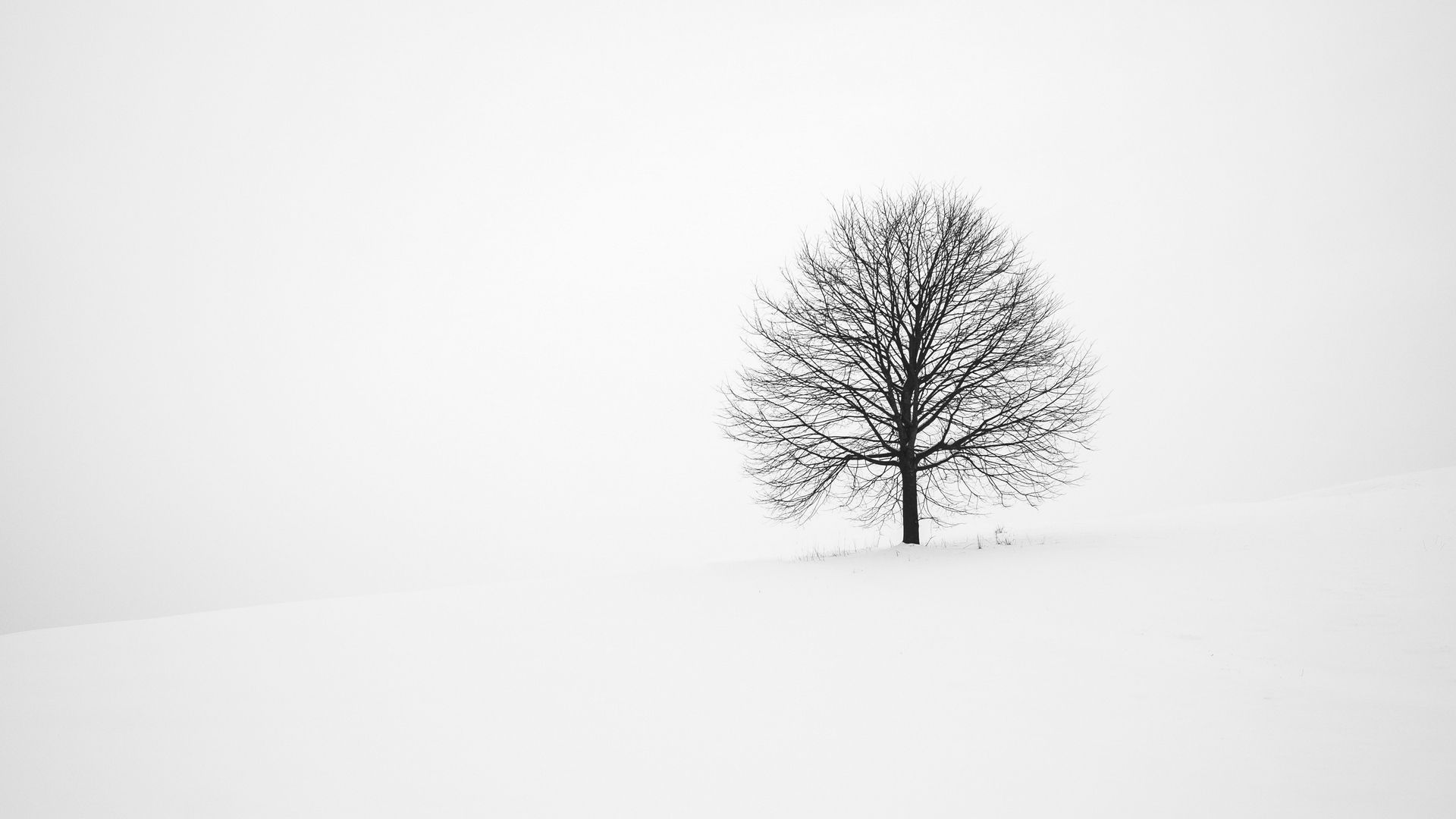Snow Minimalist Wallpapers Top Free Snow Minimalist