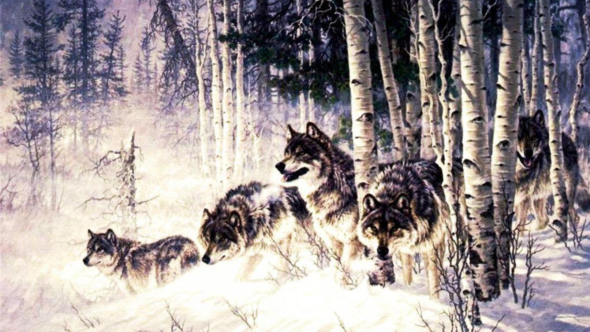 Wolves images Wolf Pack HD wallpaper and background photos