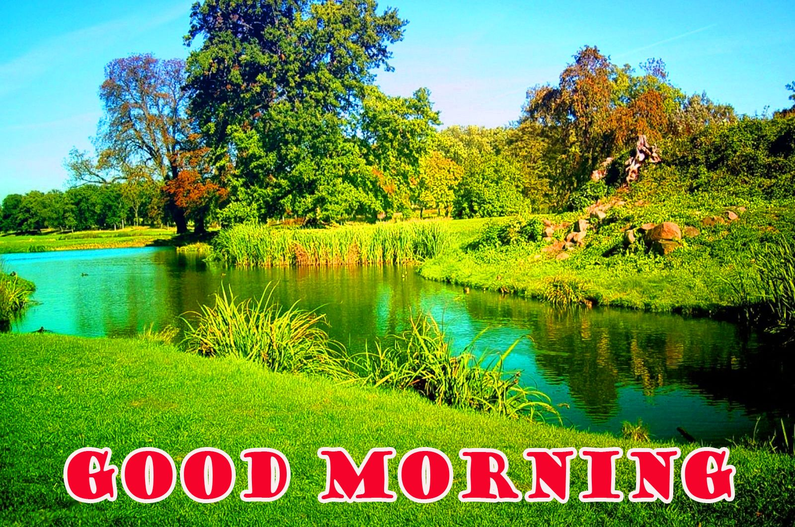 Good Morning Nature Wallpapers Top Free Good Morning Nature Backgrounds Wallpaperaccess