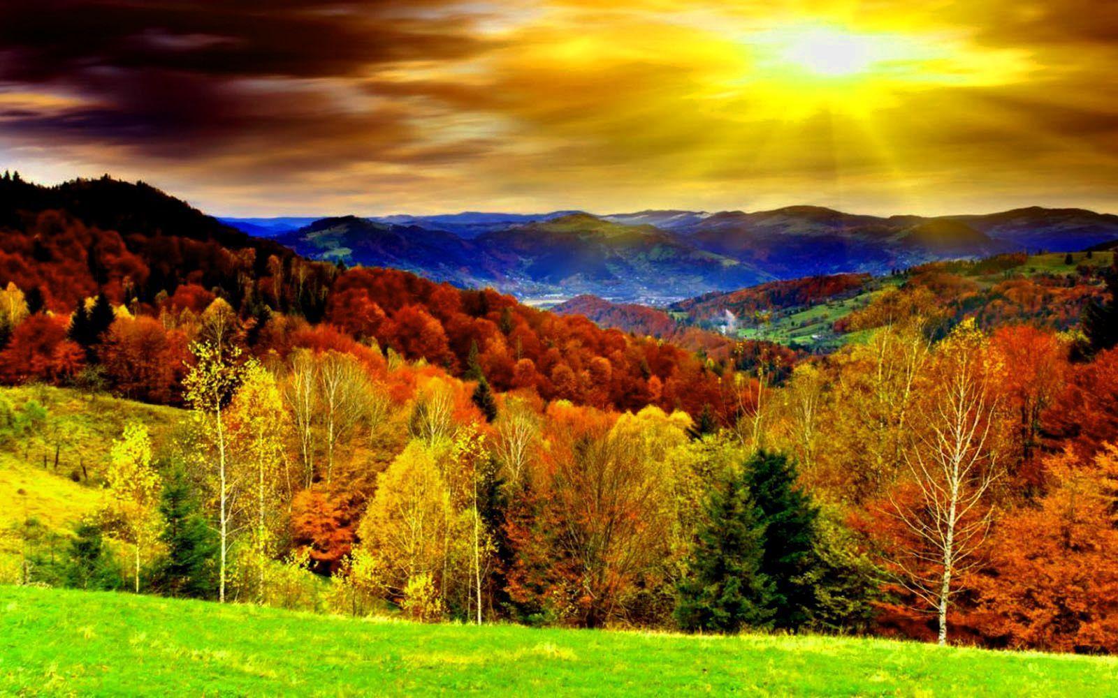 Fall Desktop Wallpapers - Top Free Fall Desktop ...