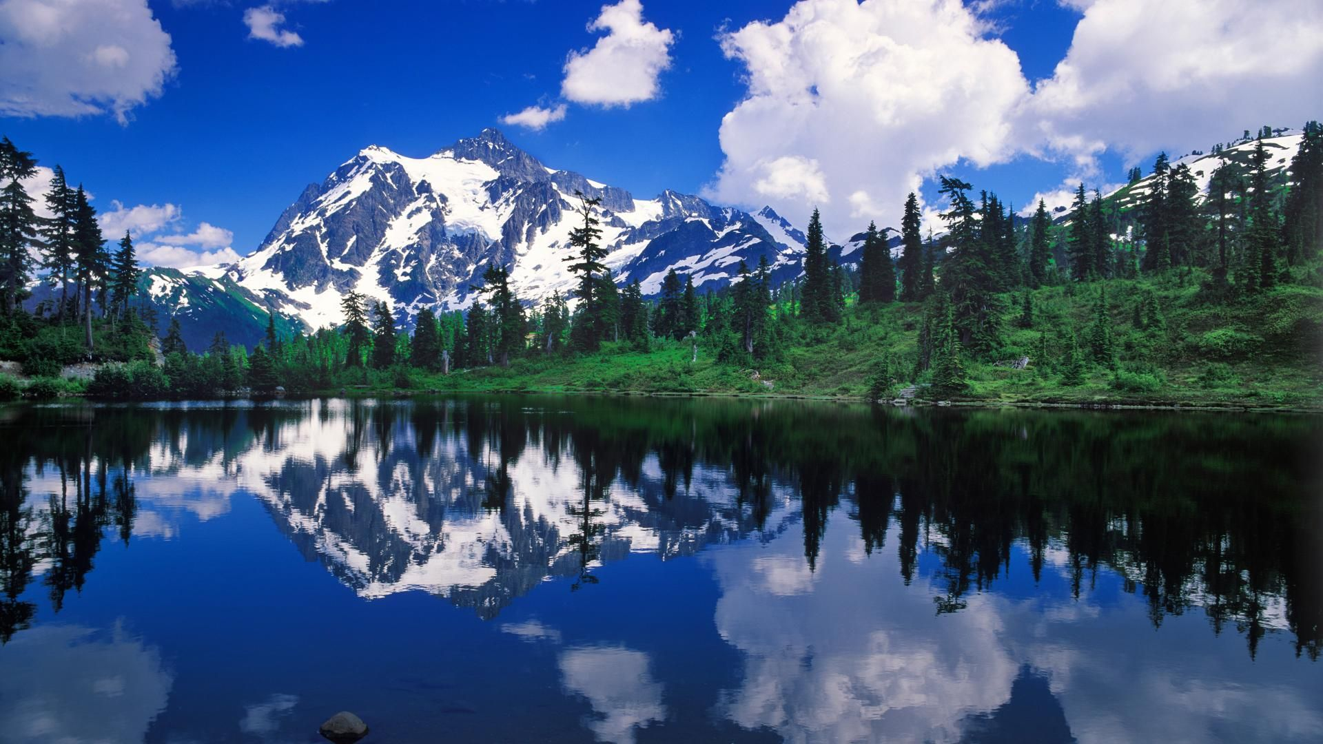 2048x1367 Trees Mountain Forest Ocean Water Sky Wallpaper