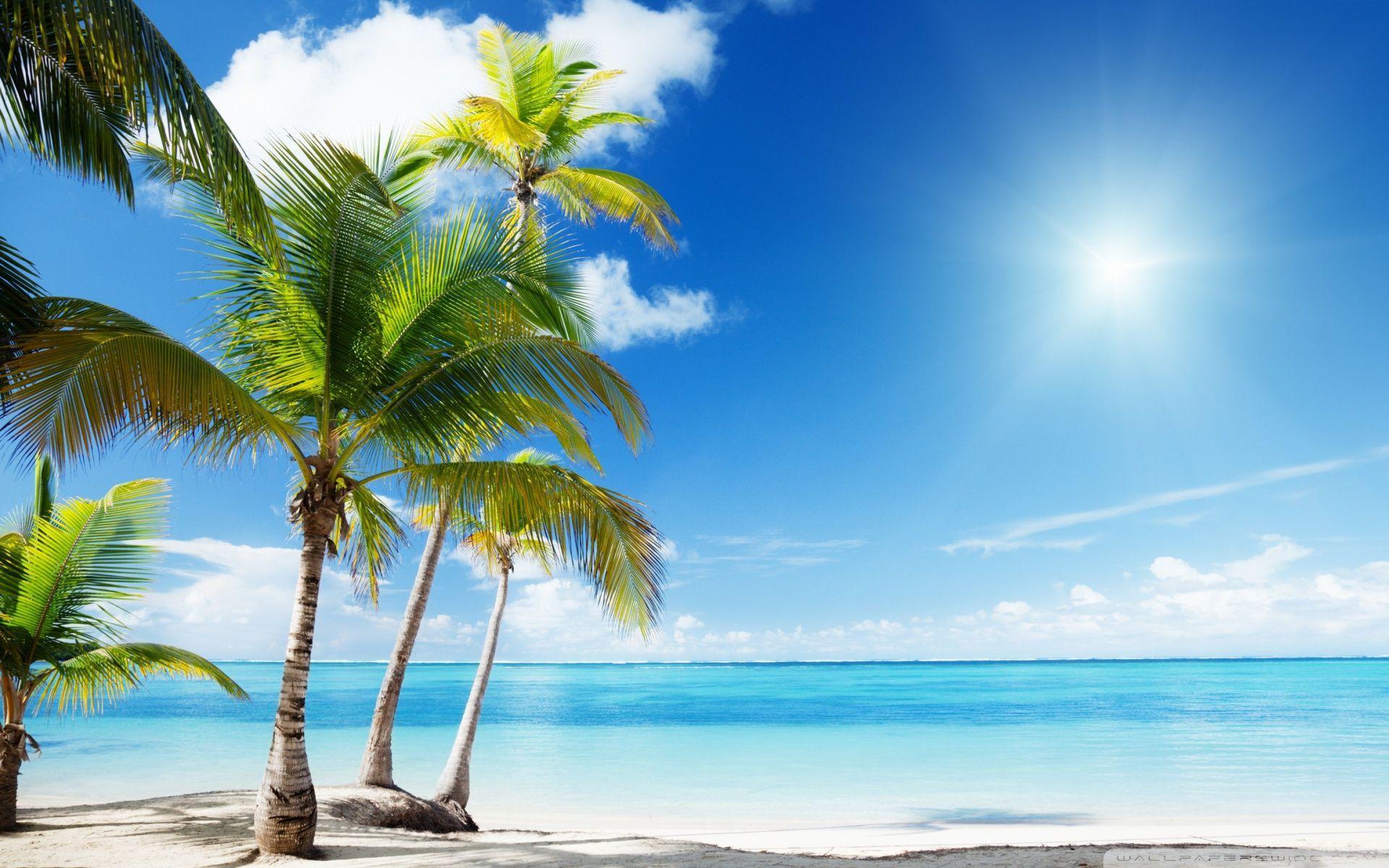 1920x1200 Tropical Beach Paradise ❤ Hình nền máy tính để bàn 4K HD cho 4K Ultra HD