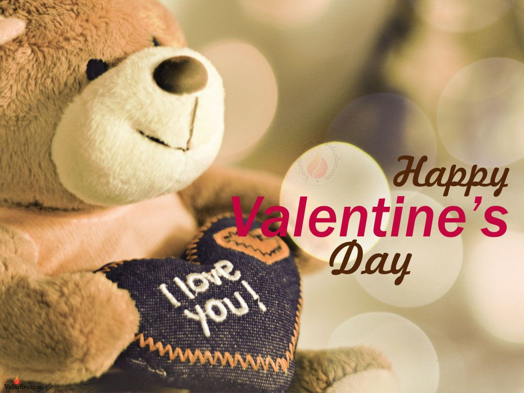 1024x768 cute happy valentines day picture happy valentines day cute teddy