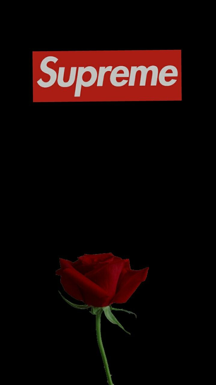 Supreme Rose Wallpapers Top Free Supreme Rose Backgrounds