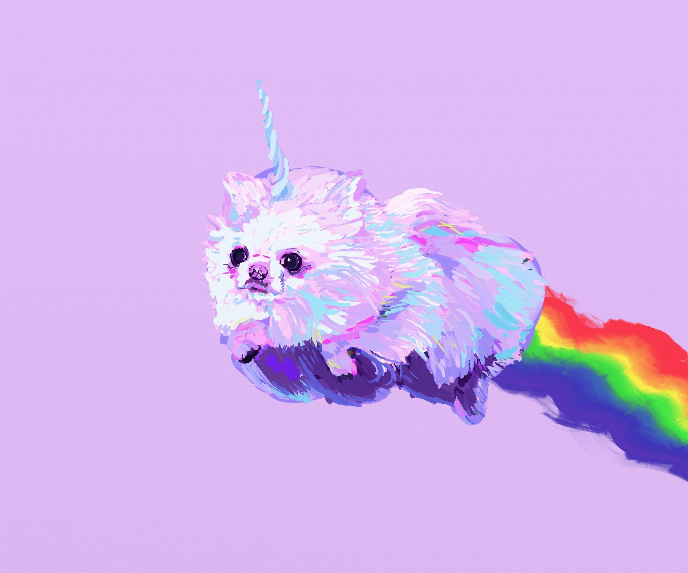 Dog Unicorn Wallpapers - Top Free Dog ...