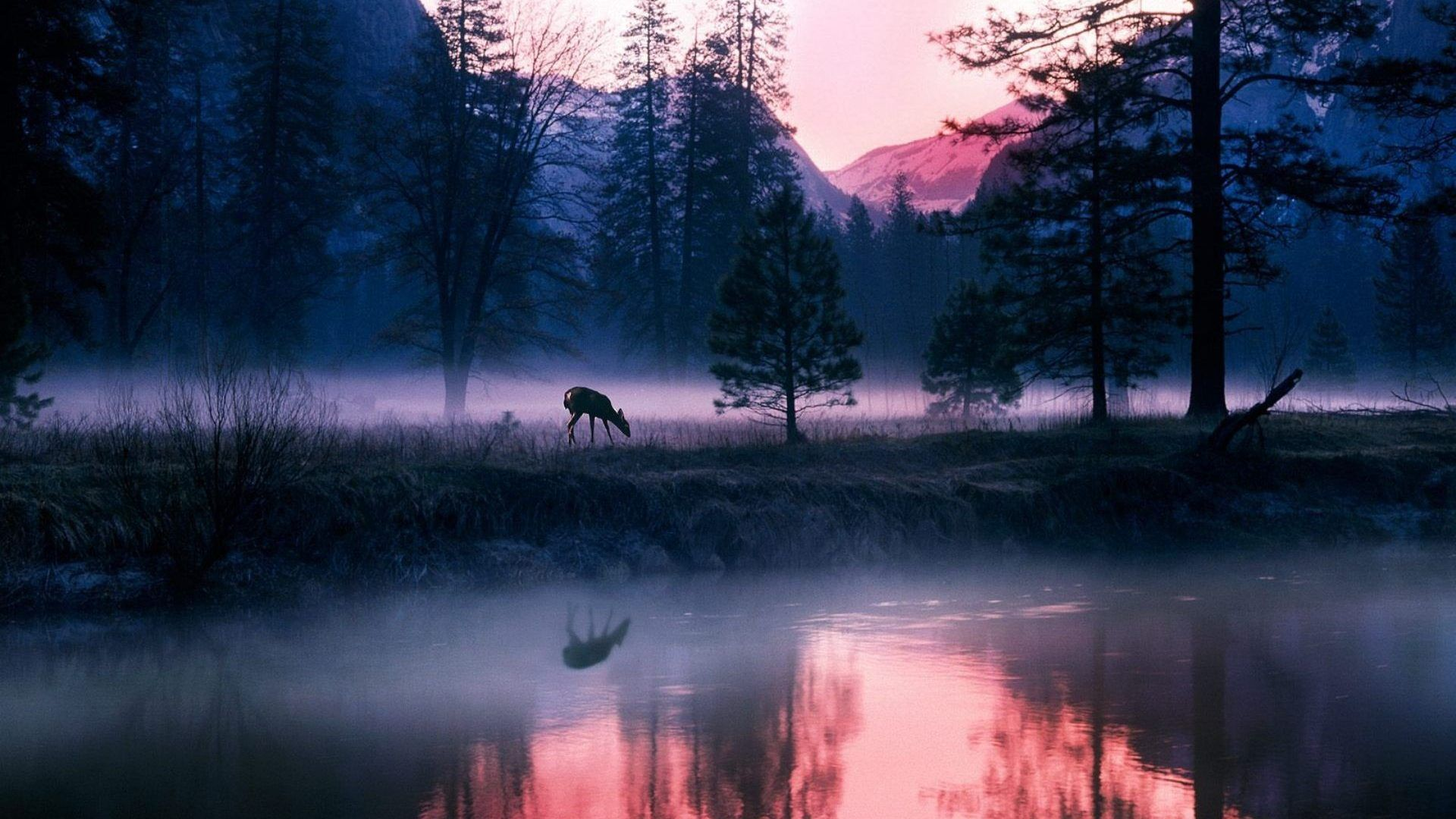 National Geographic Wallpapers Top Free National