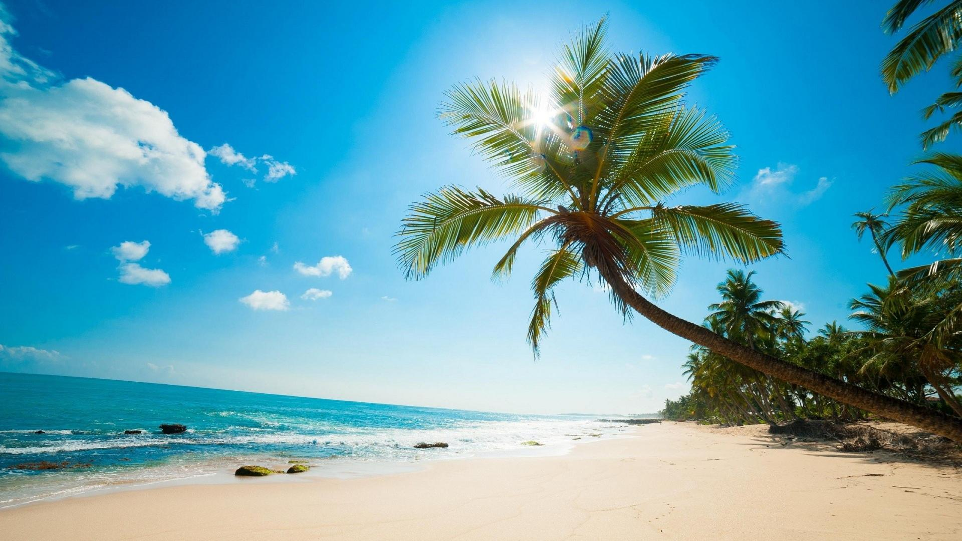 Caribbean Beach Wallpapers Top Free