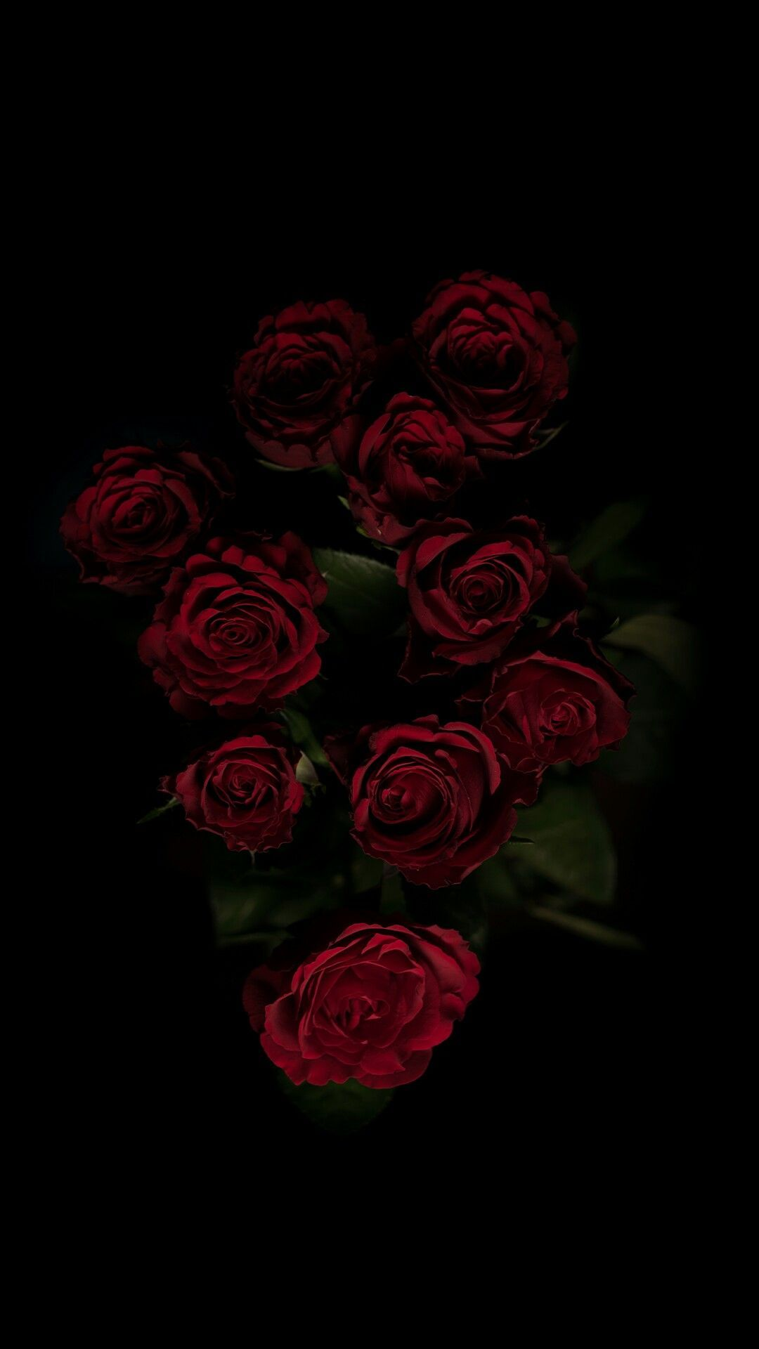 Tumblr Roses Hd Wallpapers Top Free Tumblr Roses Hd Backgrounds Wallpaperaccess