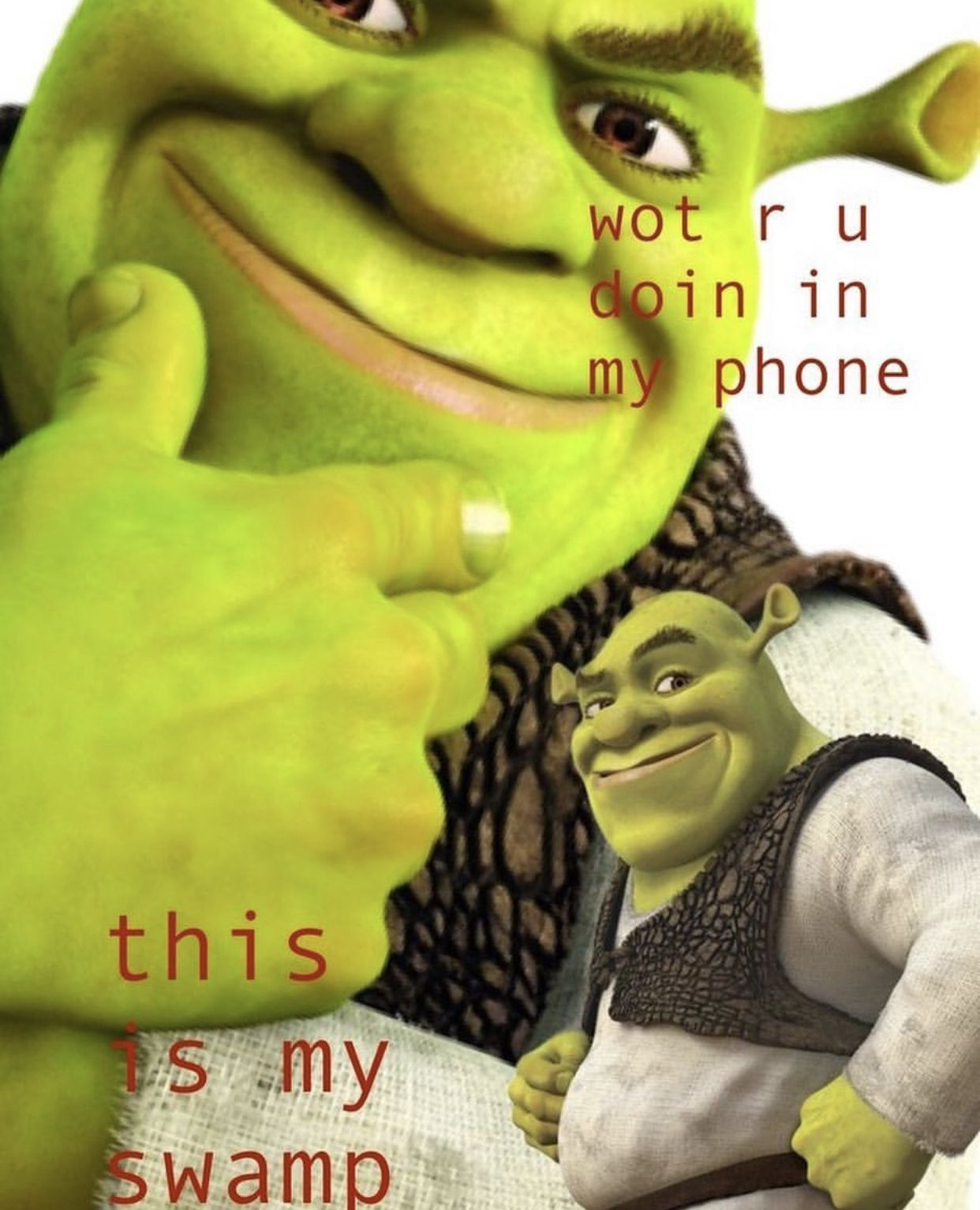 Shrek Memes Wallpapers Top Free Shrek Memes Backgrounds Wallpaperaccess