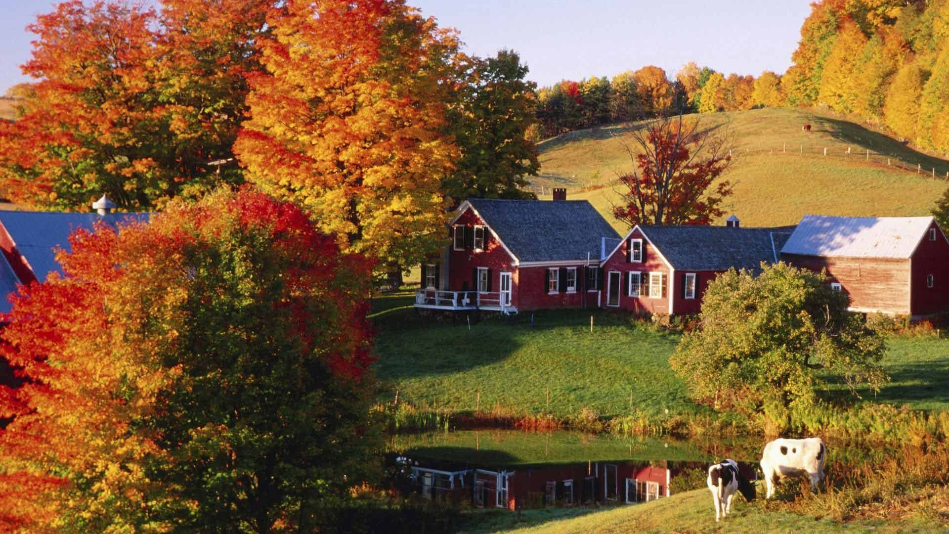 Vermont In Autumn Hd Wallpapers Top Free Vermont In Autumn Hd Backgrounds Wallpaperaccess