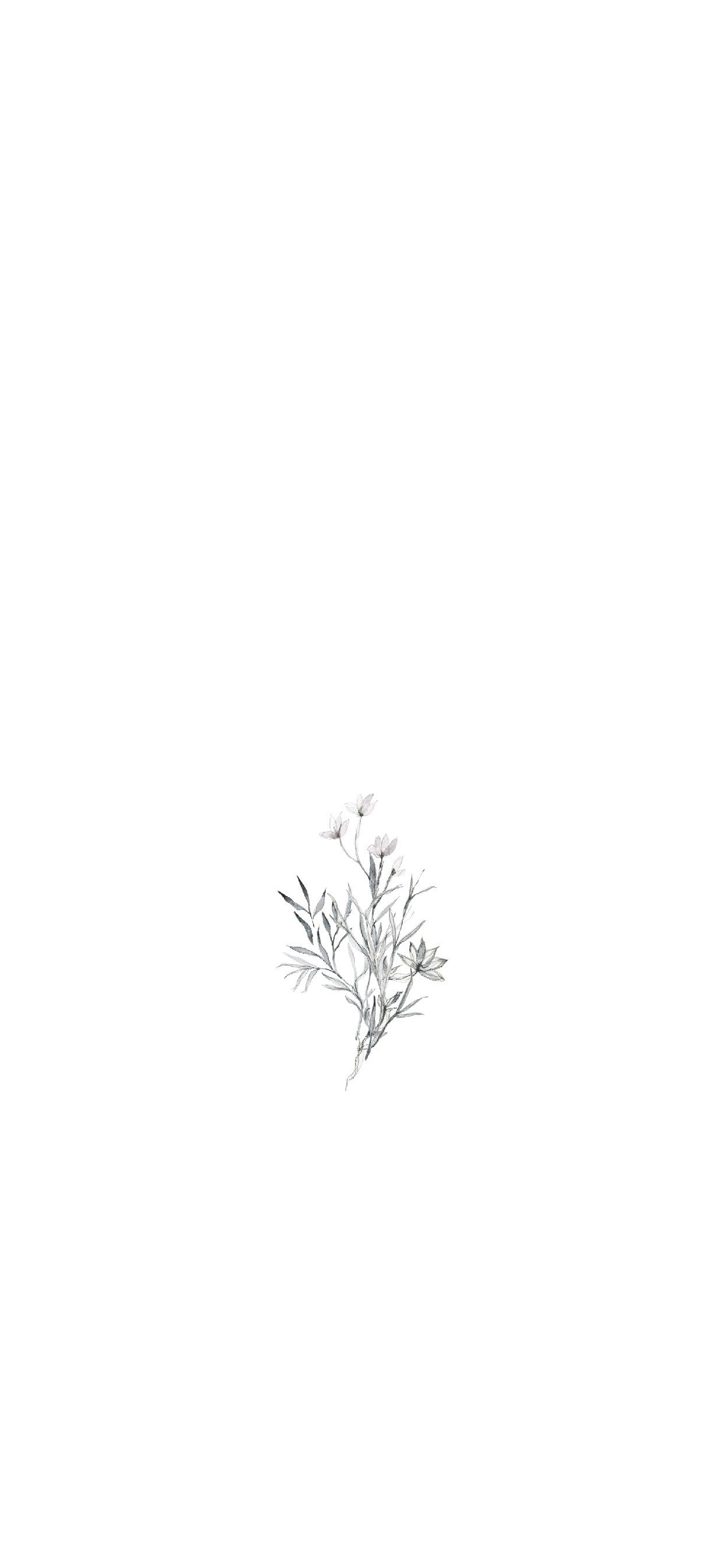 Flower Drawing Wallpapers Top Free Flower Drawing Backgrounds Wallpaperaccess