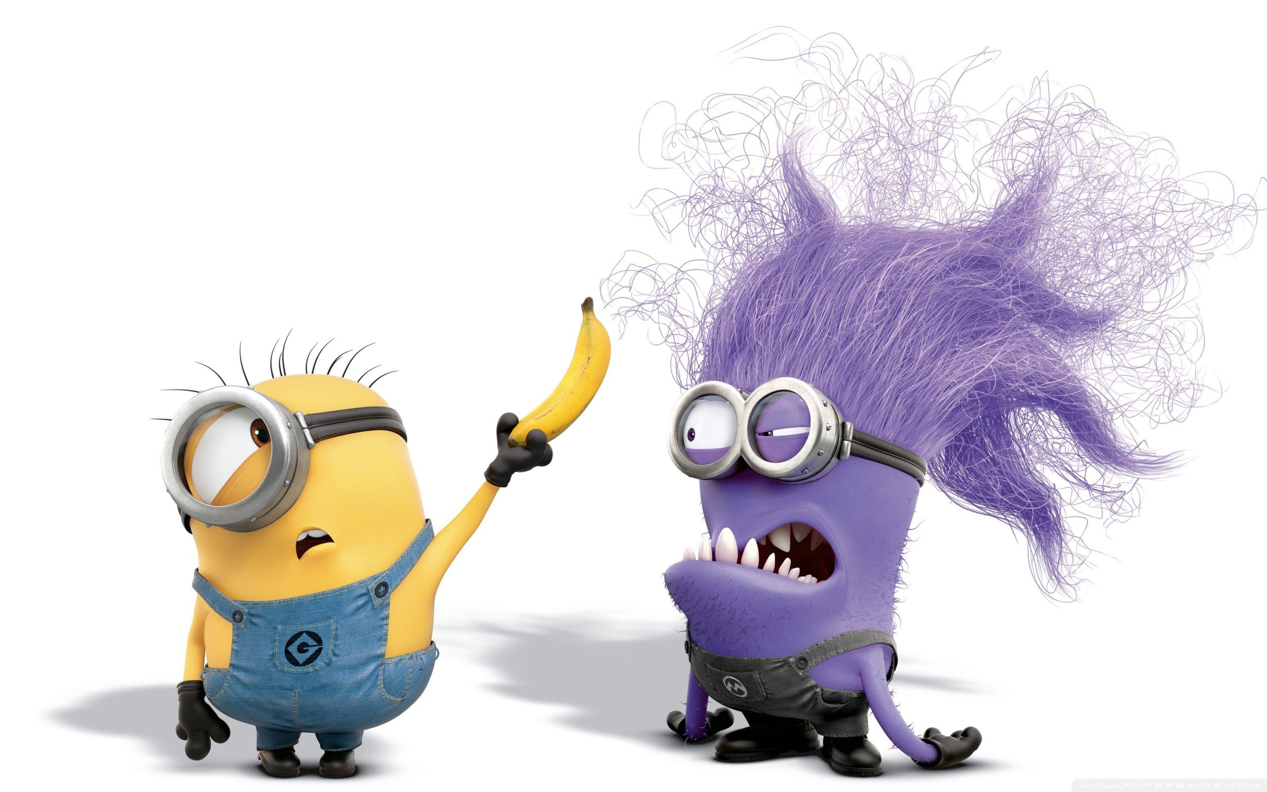 Evil Minion Wallpapers Top Free Evil Minion Backgrounds