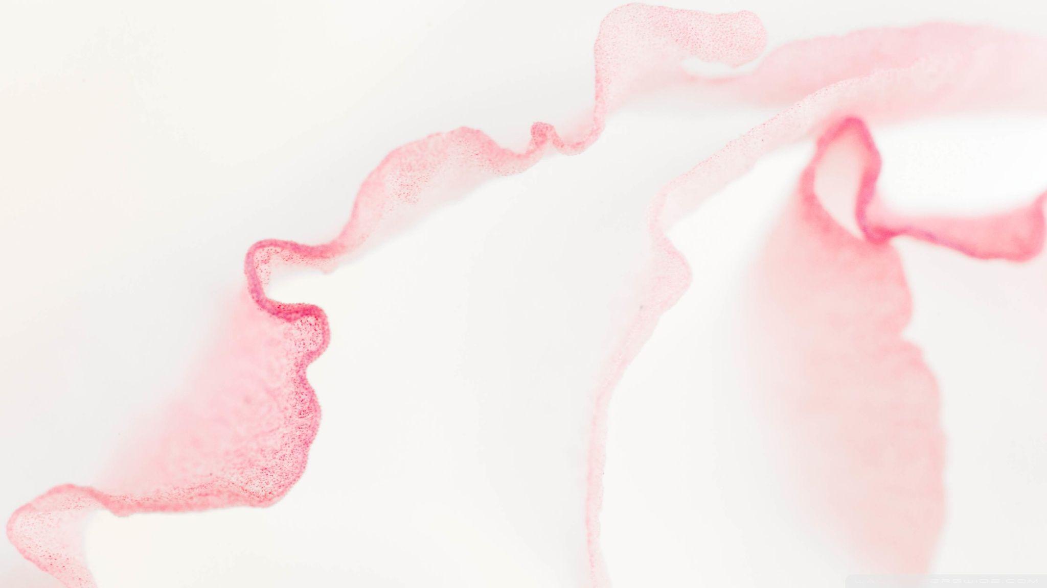 Pink Macbook Wallpapers Top Free Pink Macbook Backgrounds Wallpaperaccess Written by admin saturday, october 17, 2020 edit. pink macbook wallpapers top free pink