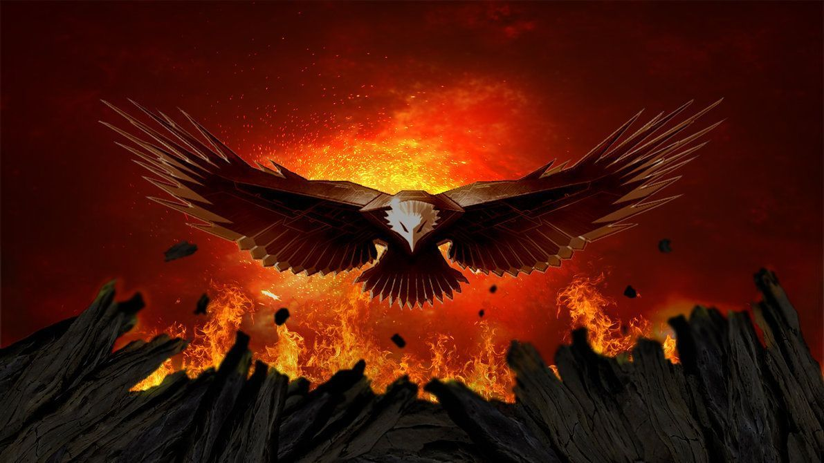 Fire Eagle Wallpapers Top Free Fire Eagle Backgrounds Wallpaperaccess