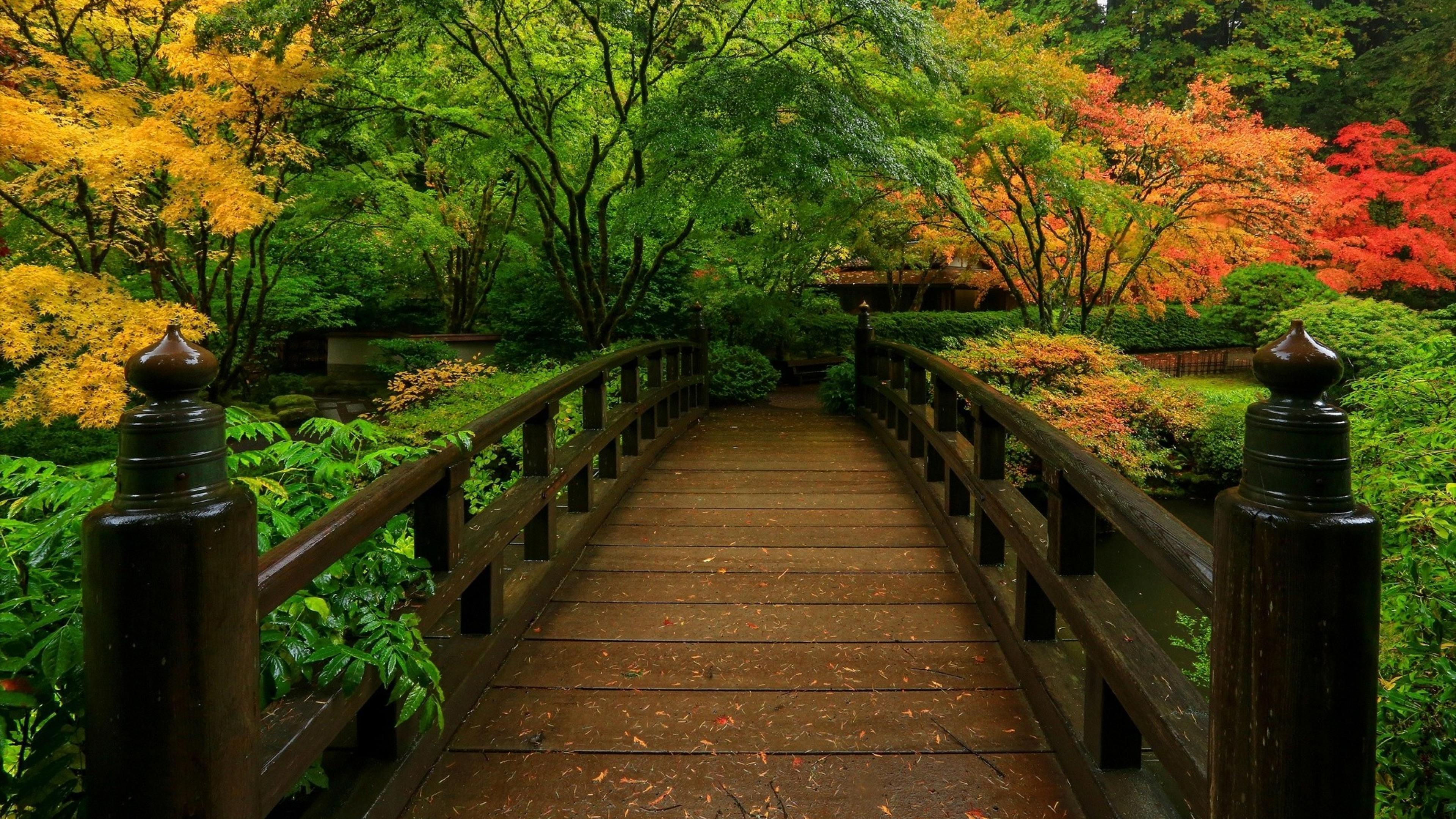 Zen Nature Hd Phone Wallpapers Top Free Zen Nature Hd Phone Backgrounds Wallpaperaccess