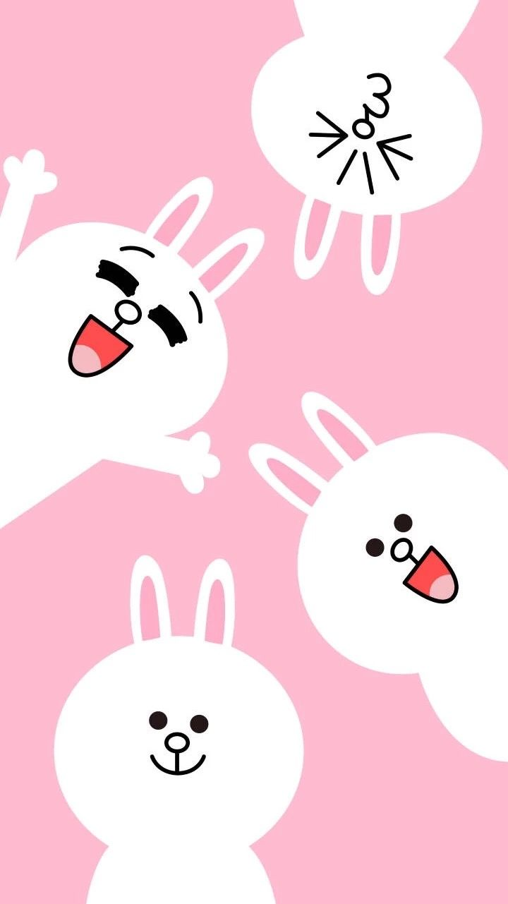 Cony Line Wallpapers Top Free Cony Line Backgrounds
