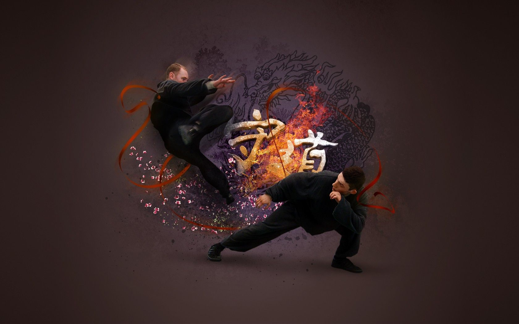 Cool Martial Arts Wallpapers Top Free Cool Martial Arts Backgrounds Wallpaperaccess