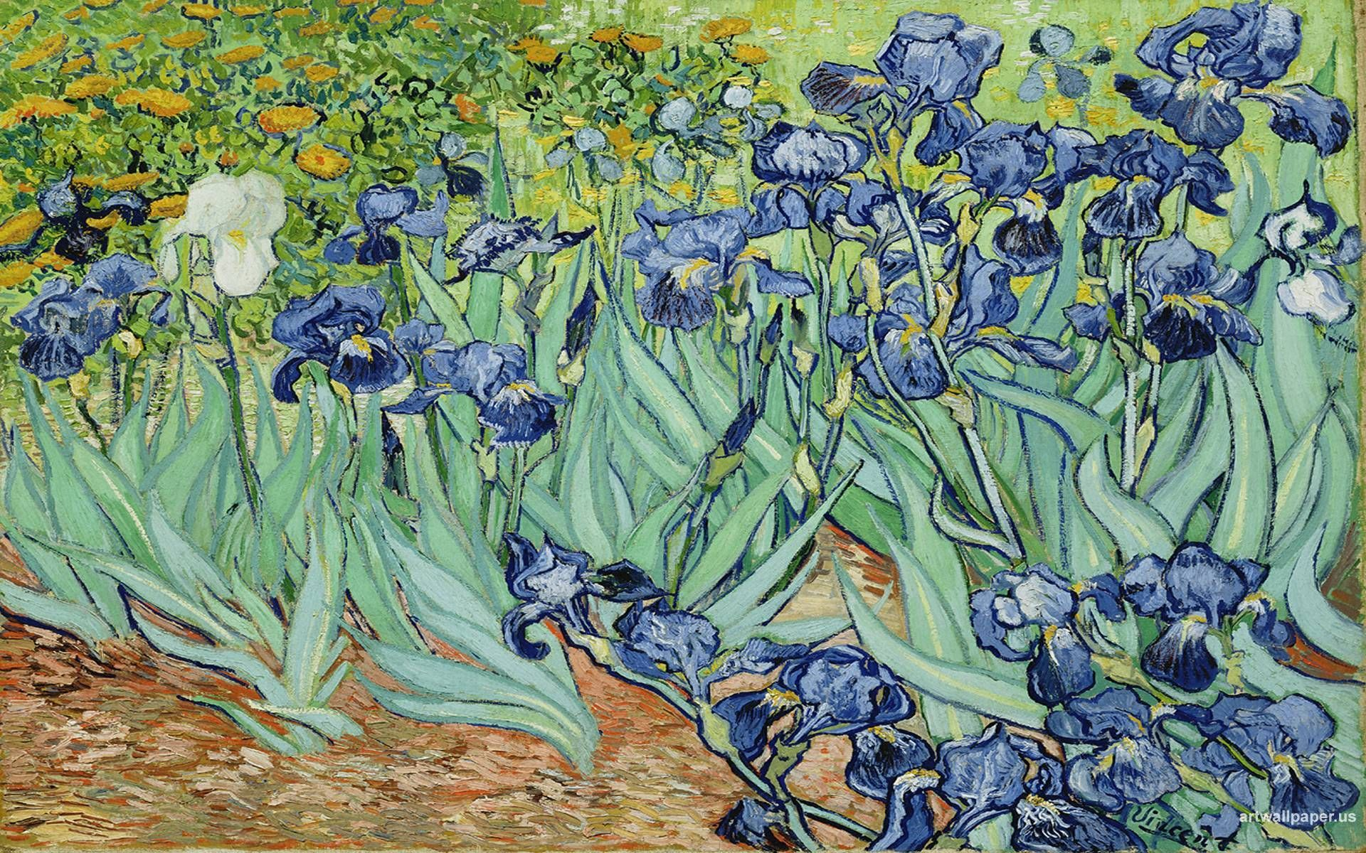 Van Gogh Irises Wallpapers Top Free Van Gogh Irises Backgrounds