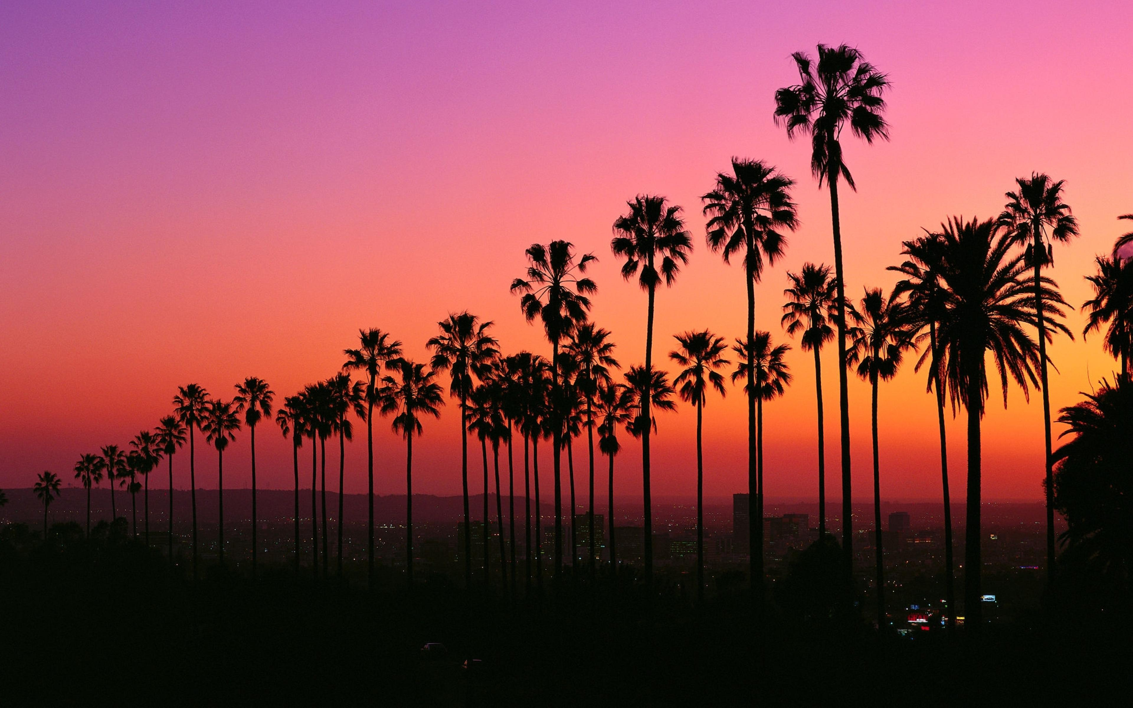 Los Angeles Sunset Wallpapers Top Free Los Angeles Sunset Backgrounds Wallpaperaccess