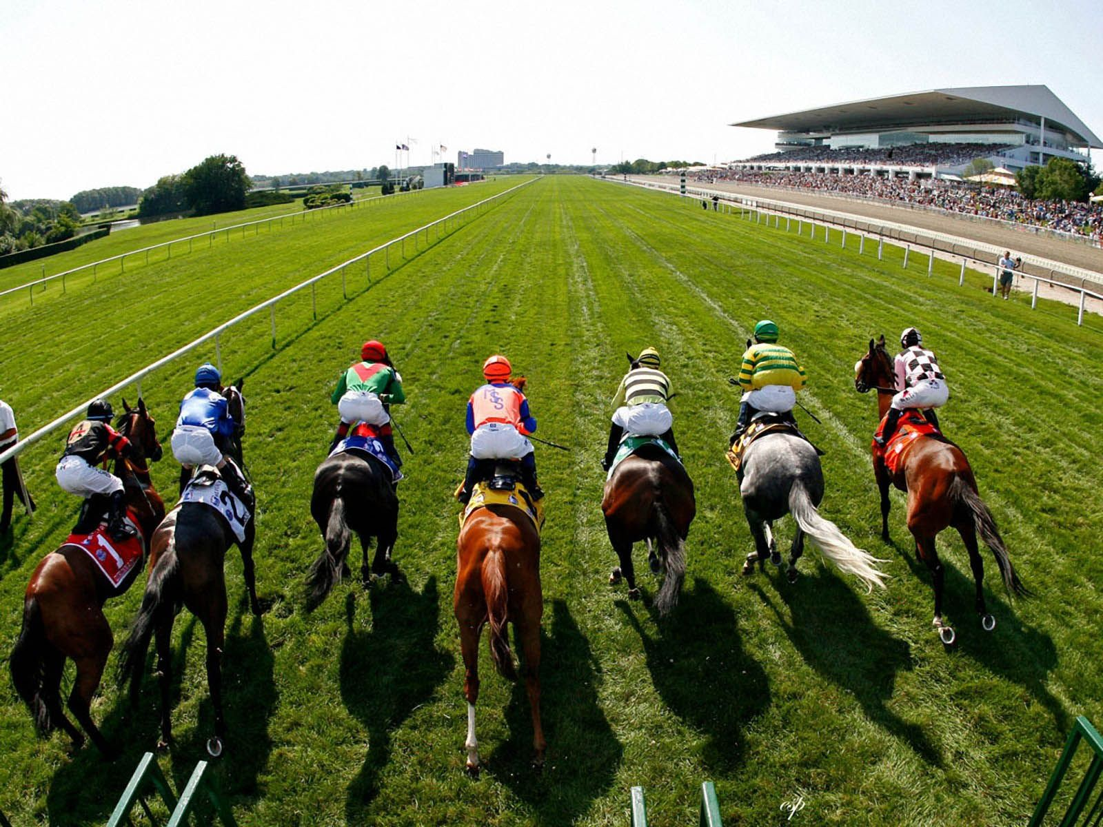 Horse Racing Wallpapers Top Free Horse Racing Backgrounds Wallpaperaccess