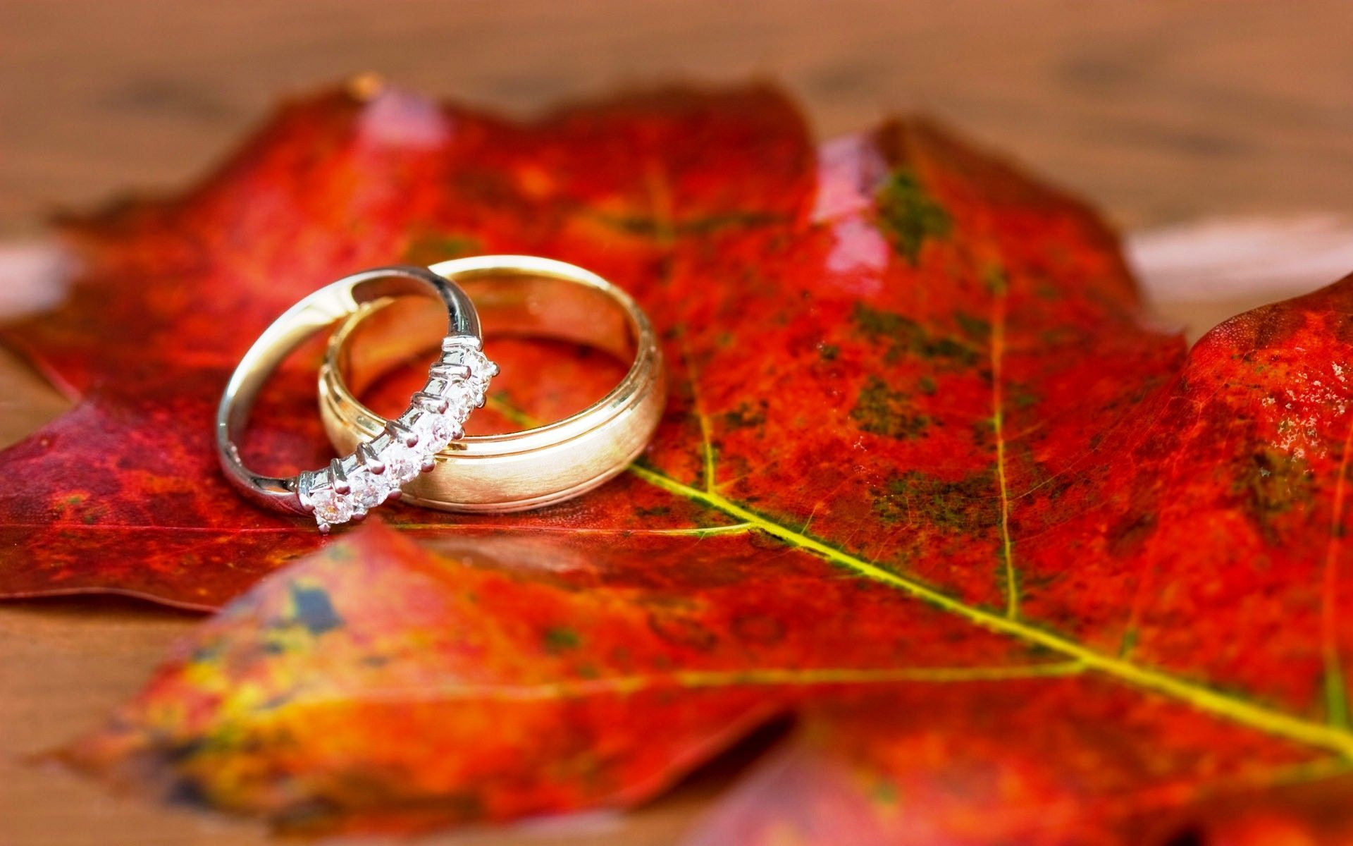 Wedding Rings Wallpapers Top Free Wedding Rings Backgrounds Wallpaperaccess