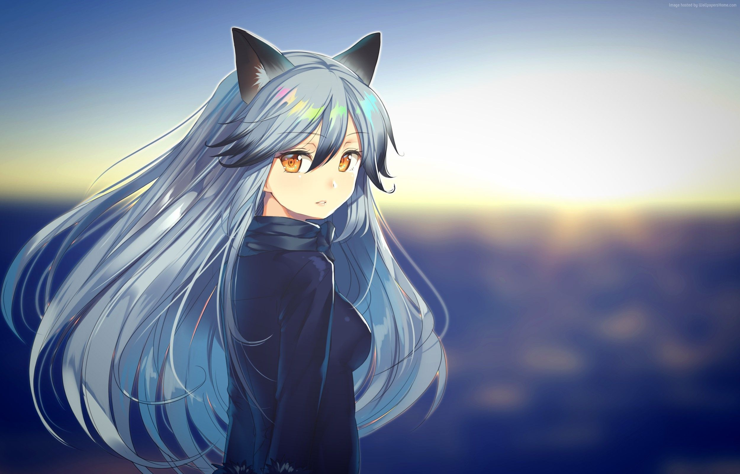 Anime Fox Girl Wallpapers Top Free Anime Fox Girl Backgrounds Wallpaperaccess