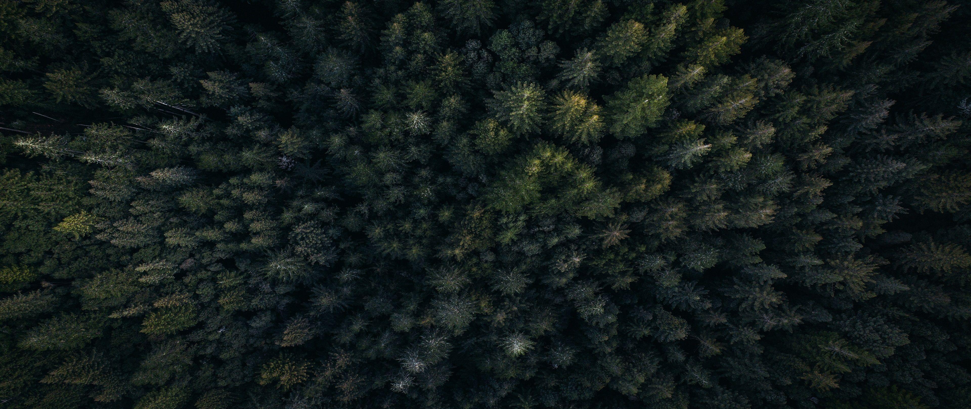 Dark 4K Wallpapers - Top Free Dark 4K Backgrounds ...