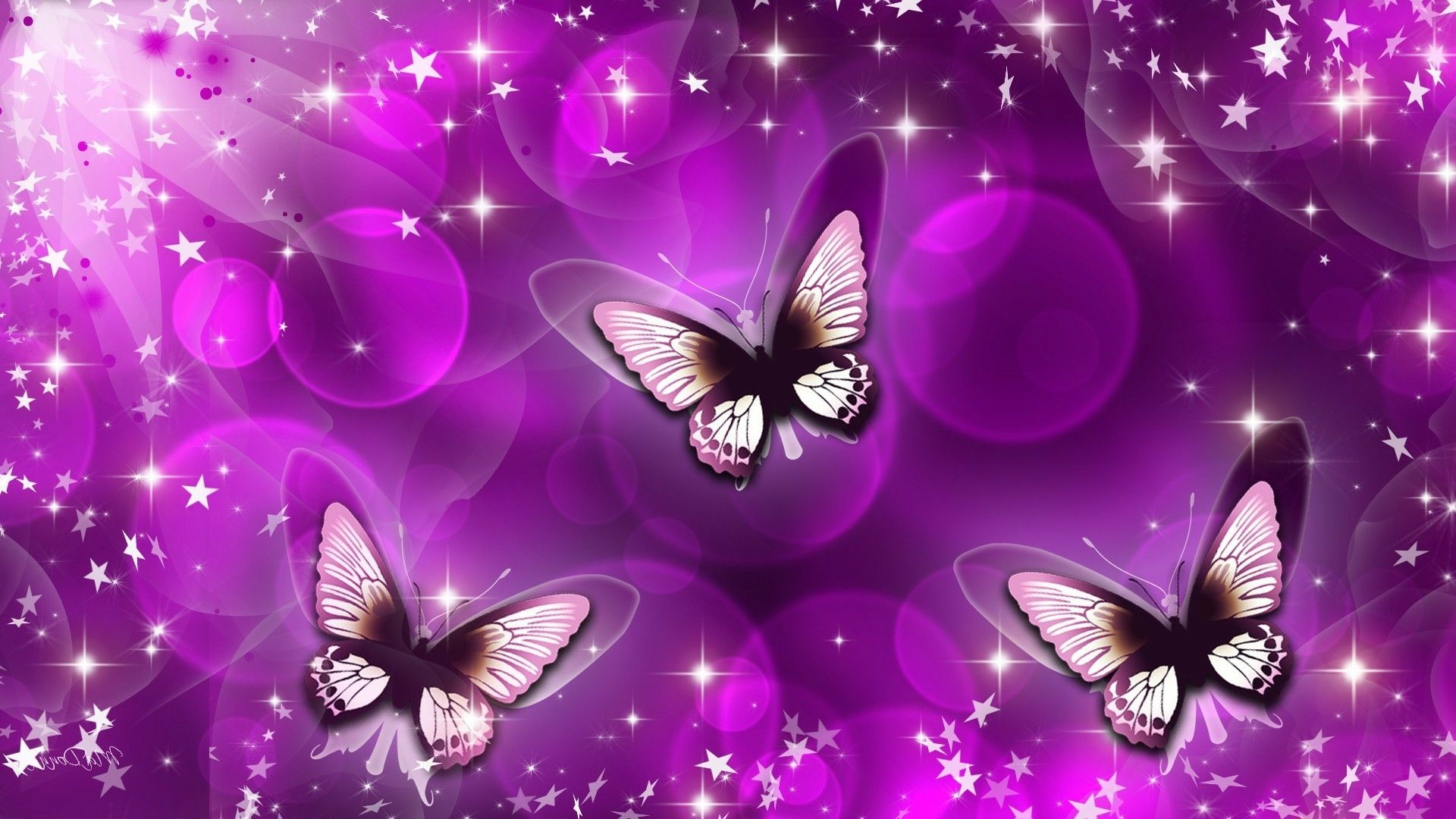 Animated Butterfly Wallpapers Top Free Animated Butterfly Backgrounds Wallpaperaccess
