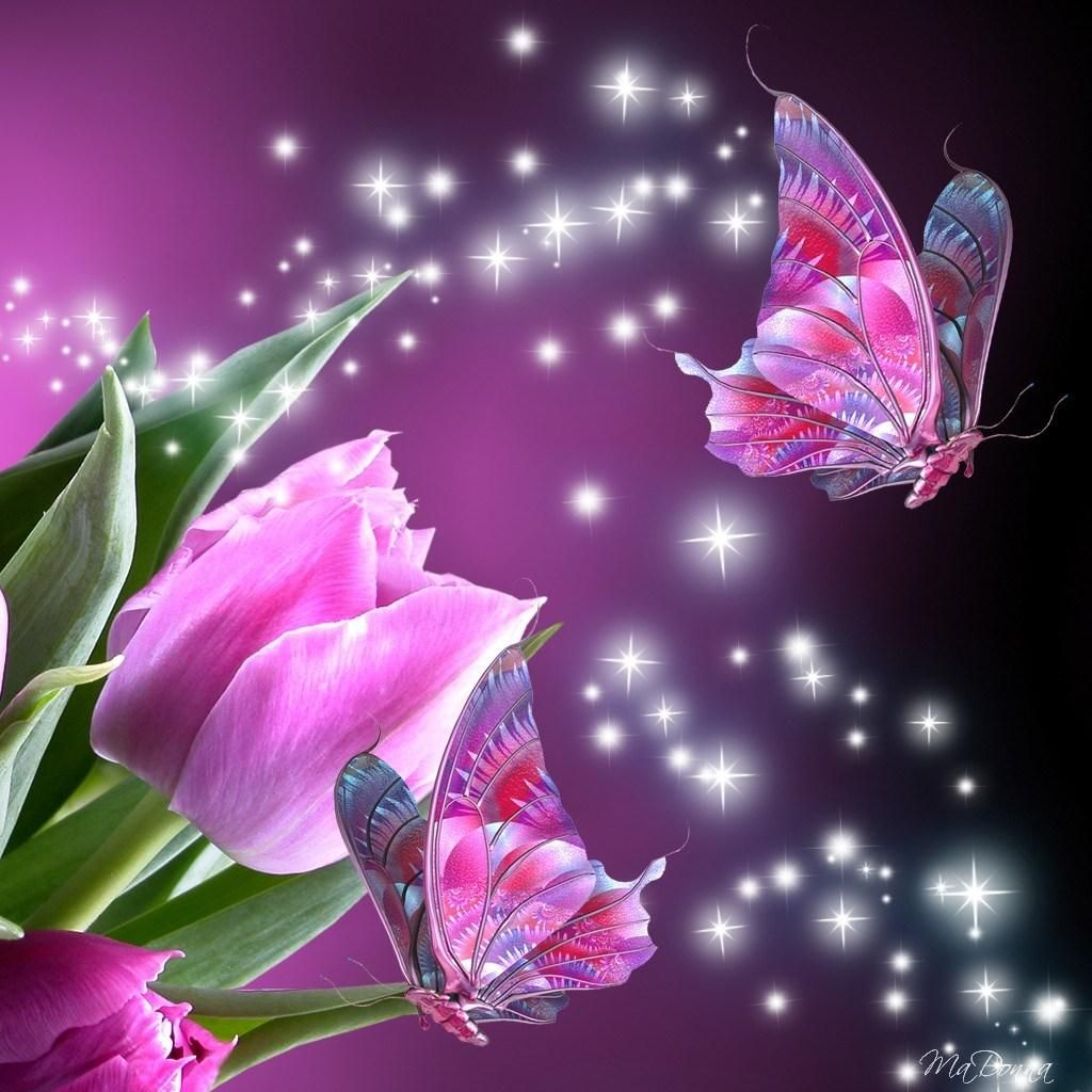 Animated Butterfly Wallpapers - Top Free Animated ...