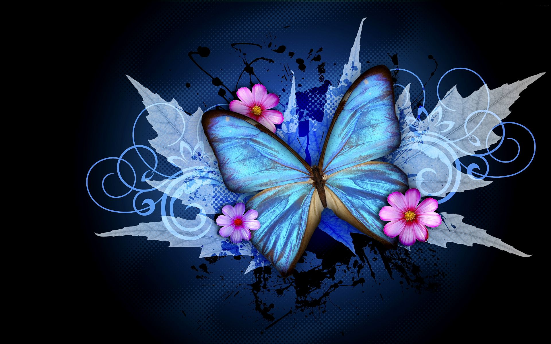 Animated Butterfly Wallpapers Top Free Animated Butterfly