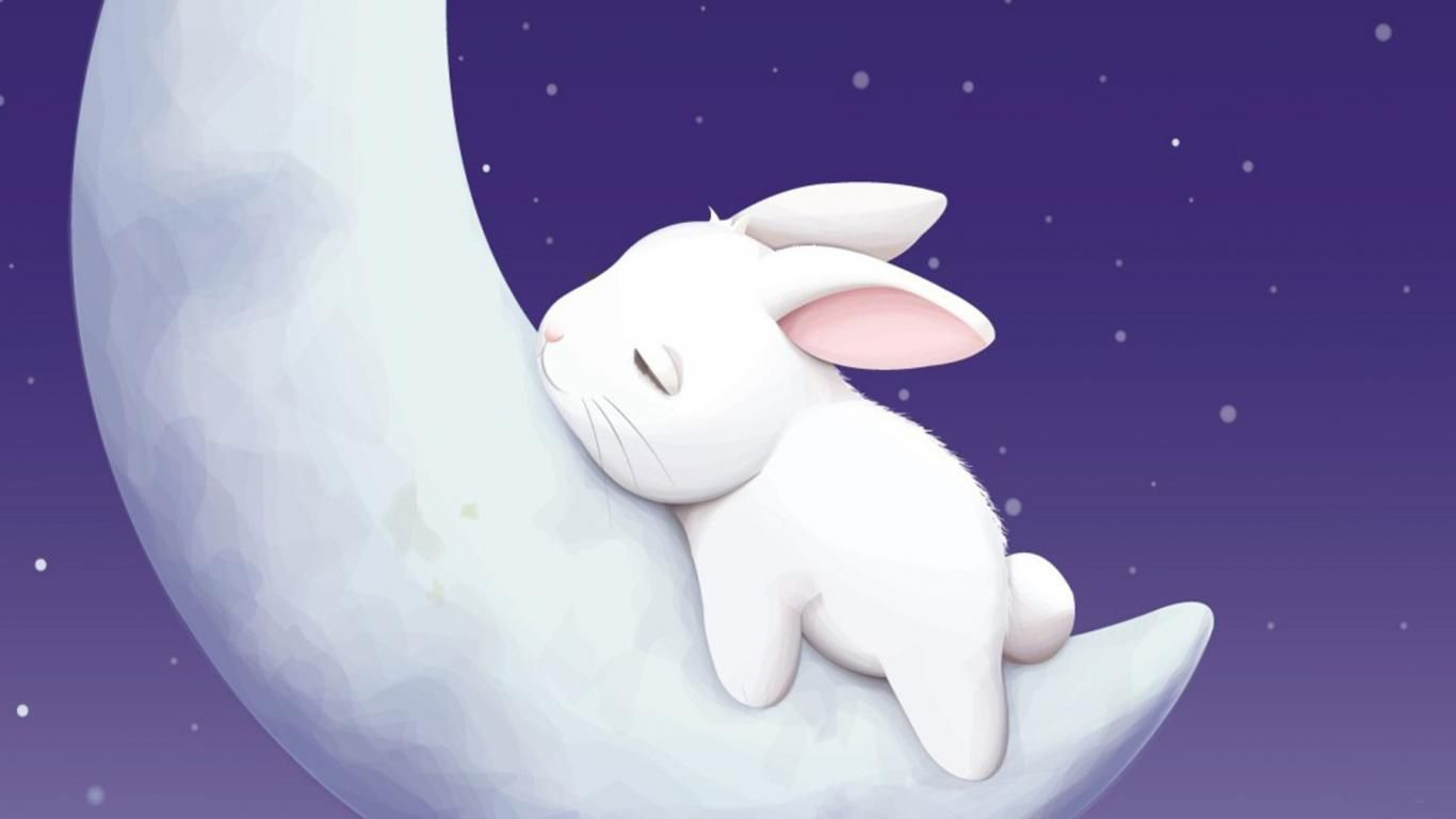 Cartoon Bunny Wallpapers Top Free Cartoon Bunny Backgrounds
