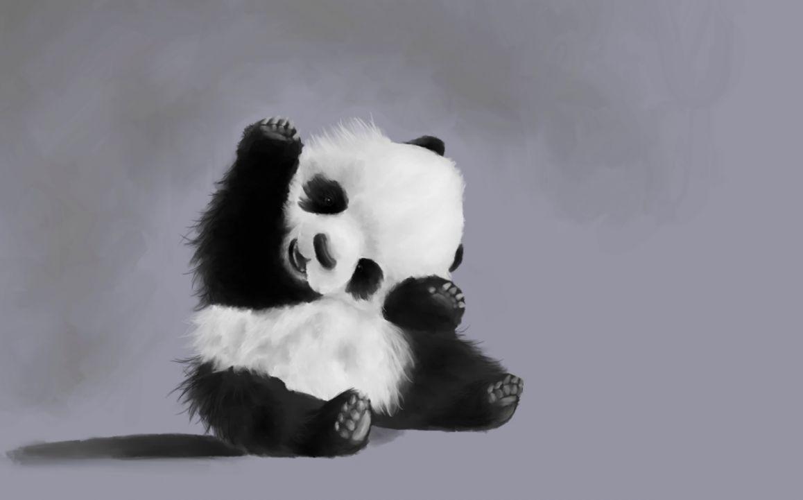 Cute Baby Panda Wallpapers Top Free Cute Baby Panda Backgrounds Wallpaperaccess