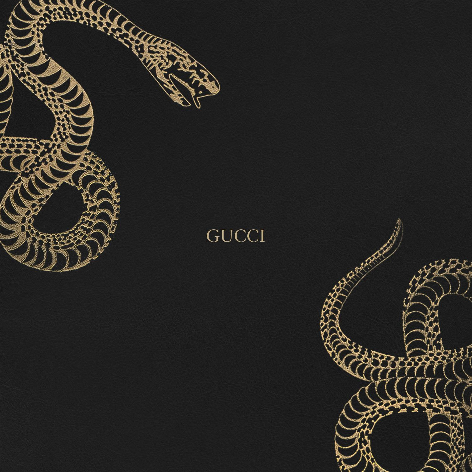 Gucci iPhone Wallpapers , Top Free Gucci iPhone Backgrounds